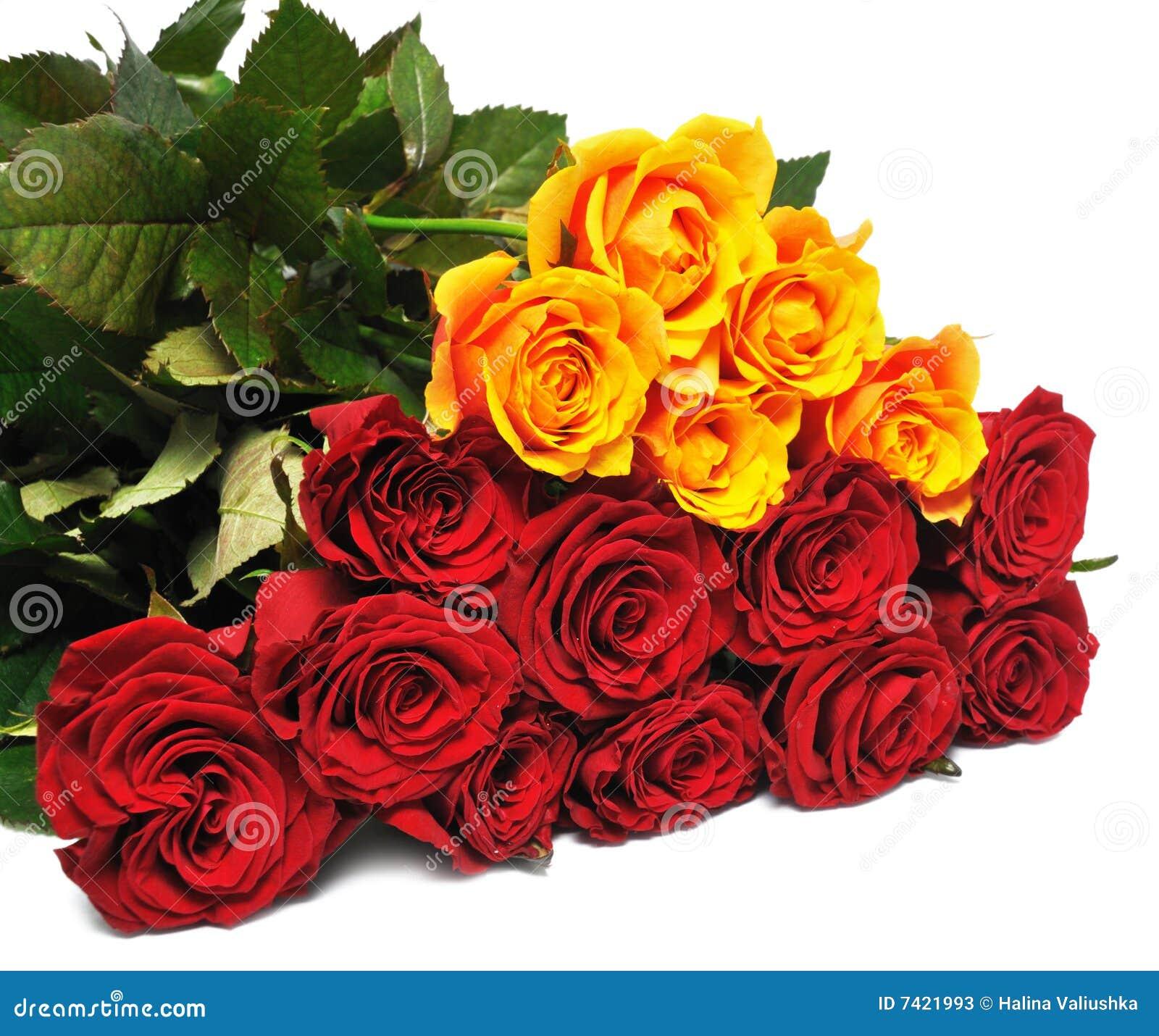 Rosas grandes del ramo fotos de archivo imagen 7421993 - Ramos de flores grandes ...