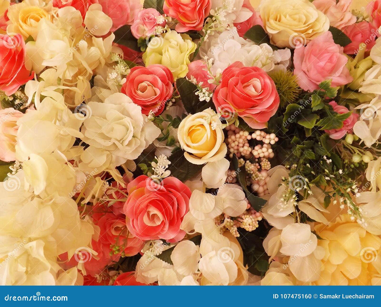 Rosas hermosas borrosas del vintage