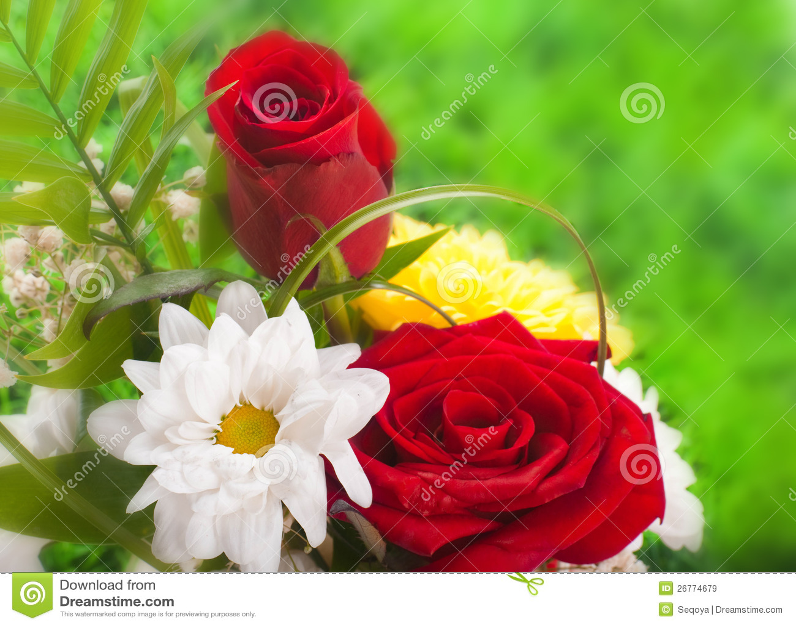 Rosas hermosas en estilo retro imagen de archivo imagen - Rosas rosas hermosas ...