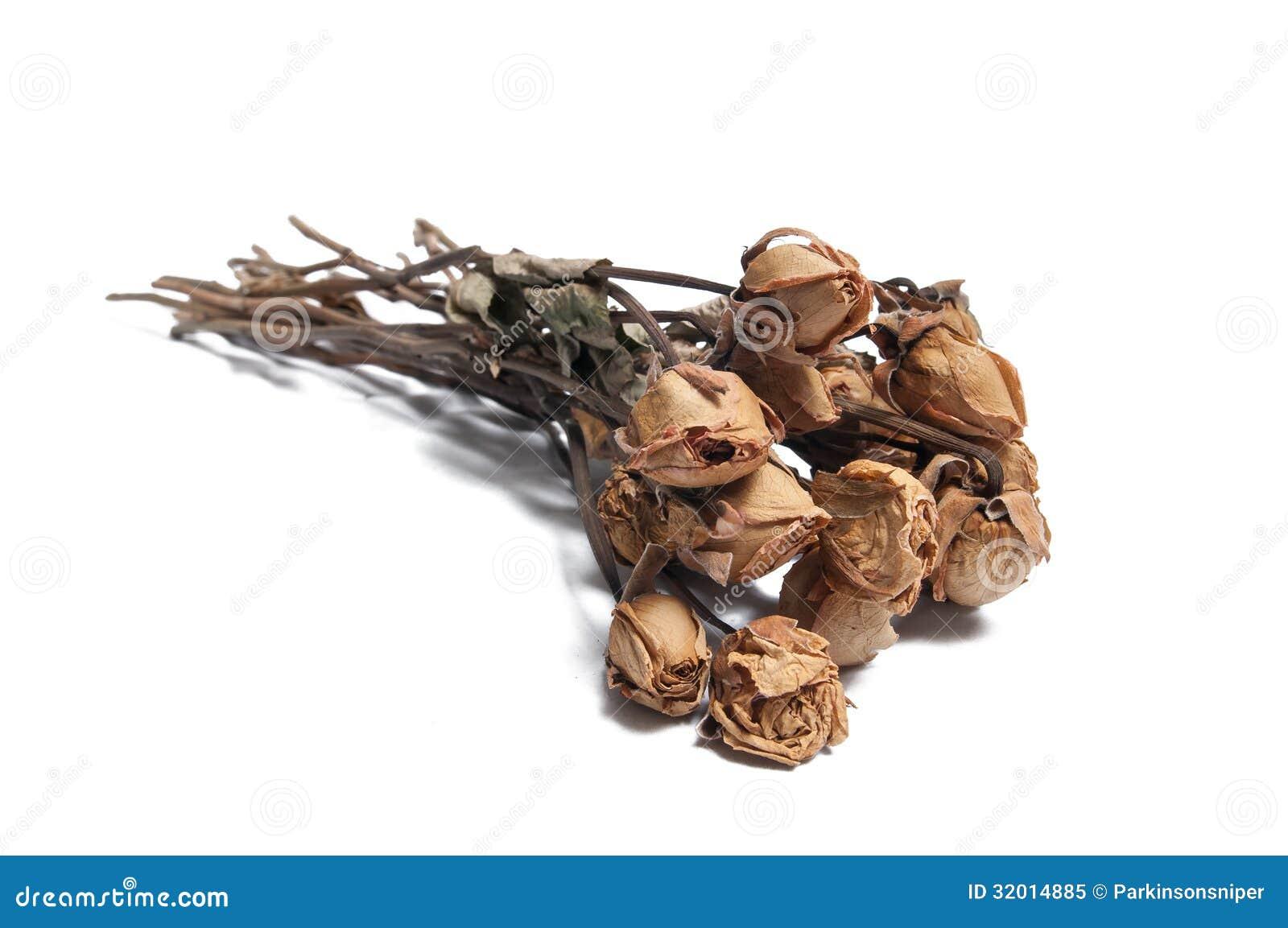 Rosas inoperantes