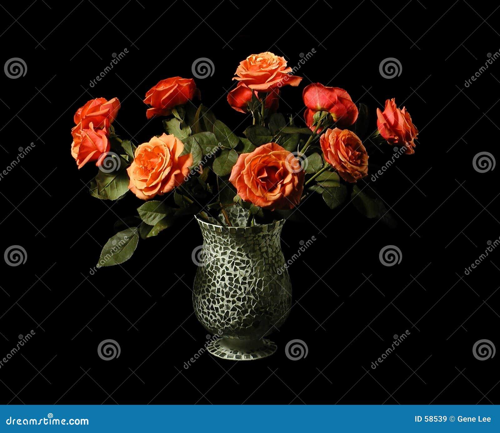 Rosas lasów