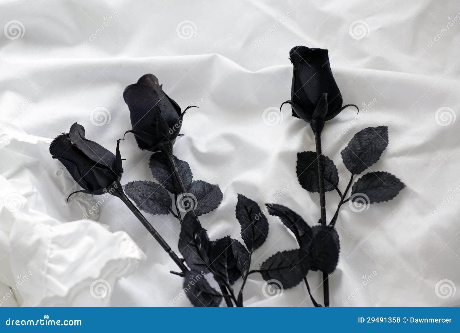Rosas Negras En La Hoja De Cama Blanca Foto De Archivo Imagen De
