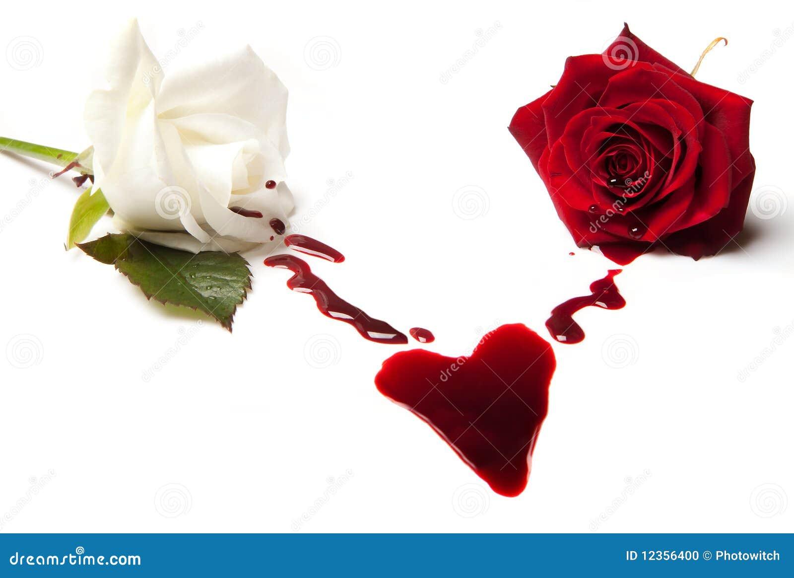 Rosas que sangram um coração