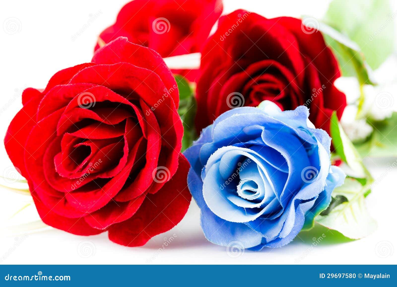 Rosas Rojas Y Azules Foto De Archivo Imagen De Wallpaper 29697580