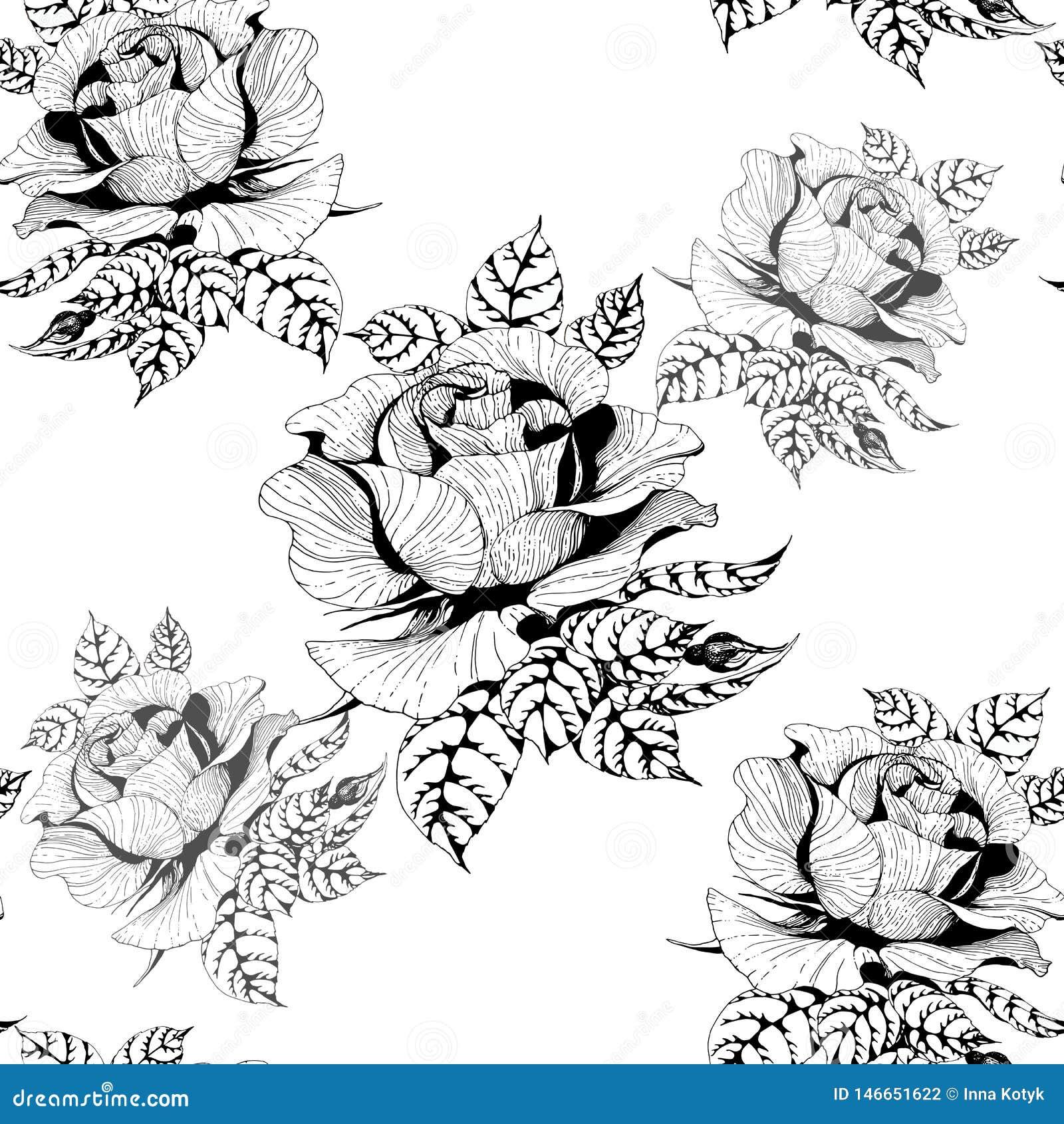 Rosas Una rama de rosas con las hojas, las flores y los brotes Fondo incons?til Collage de flores y de hojas