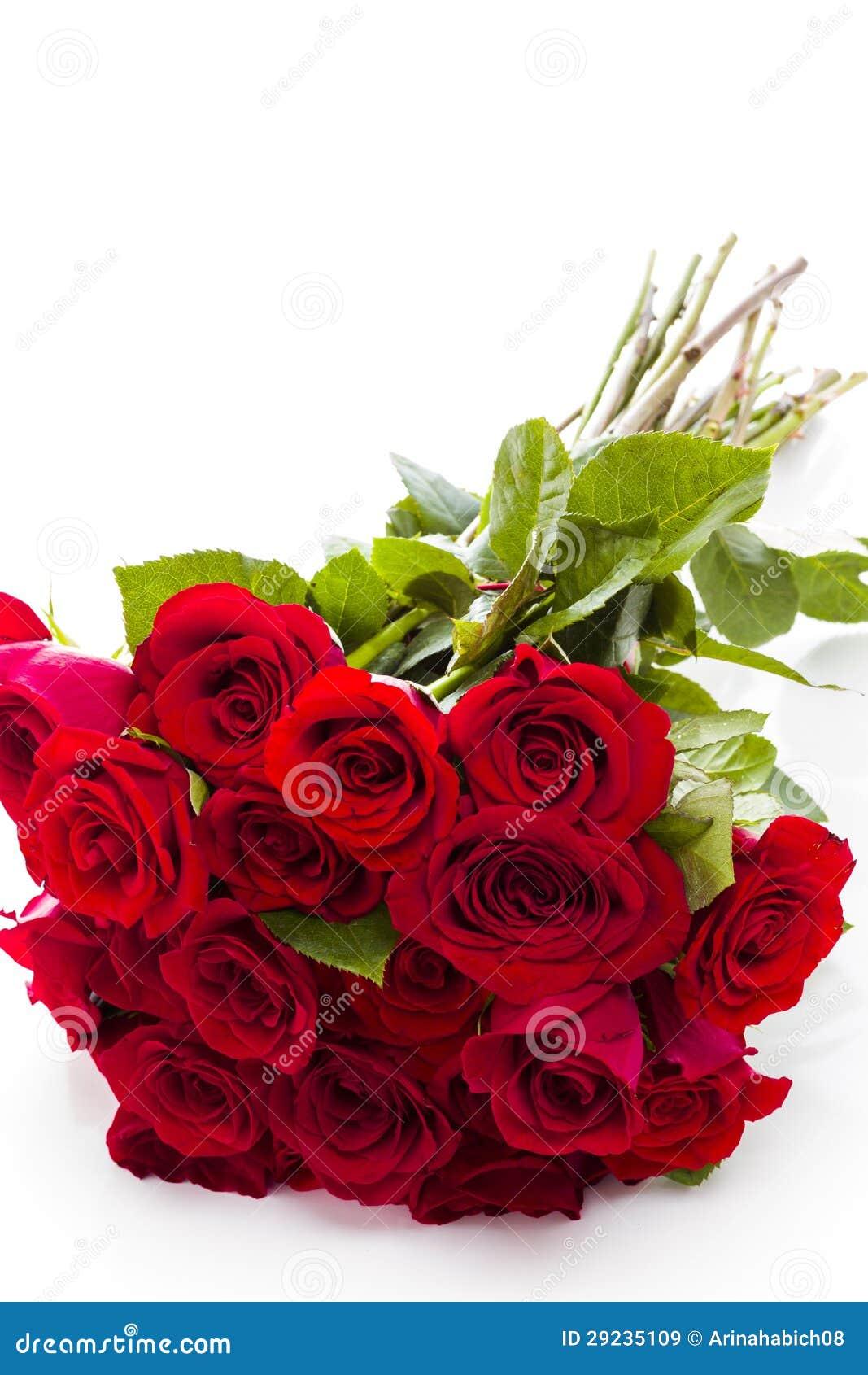 Download Rosas vermelhas imagem de stock. Imagem de se, flor, rosas - 29235109