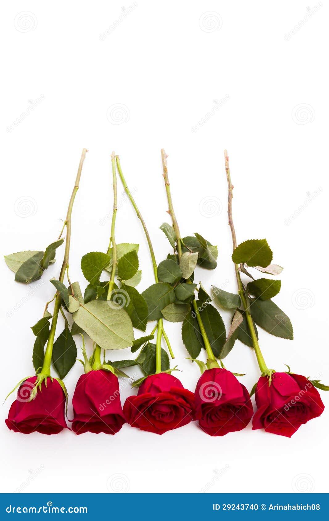 Download Rosas vermelhas foto de stock. Imagem de rosa, bouquet - 29243740