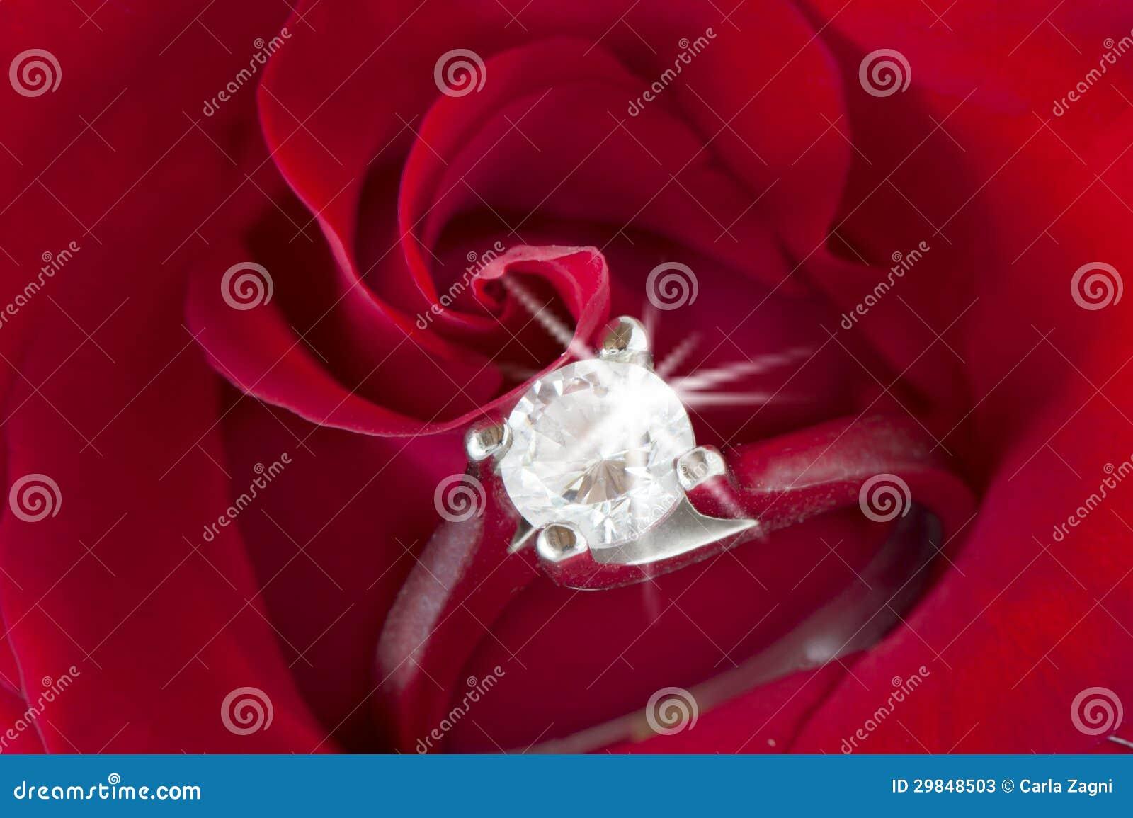 Rosas vermelhas e alianças de casamento