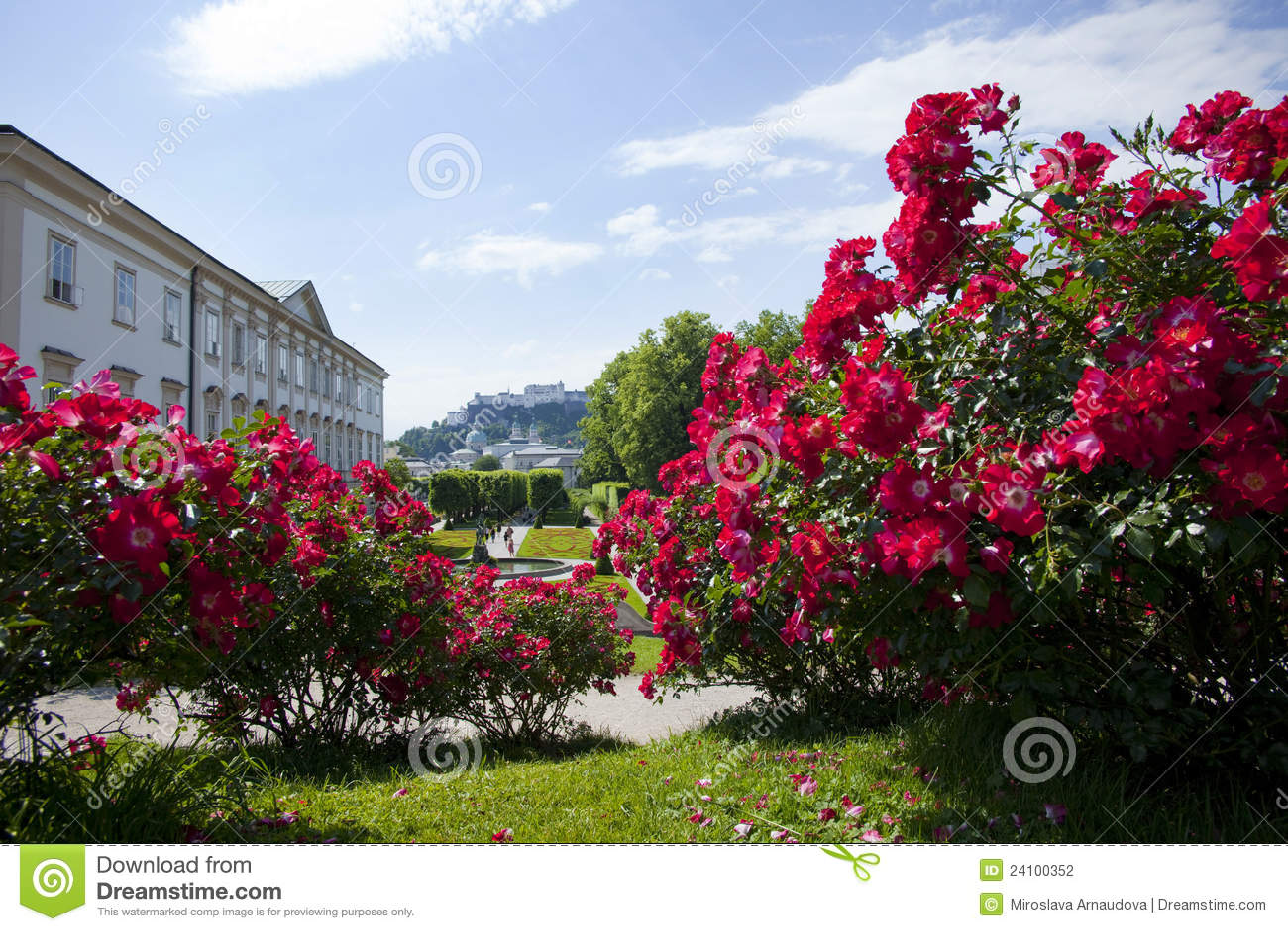 jardins rosas vermelhas:vista geral de Mirabell jardina à cidade de Salzburg, Áustria.