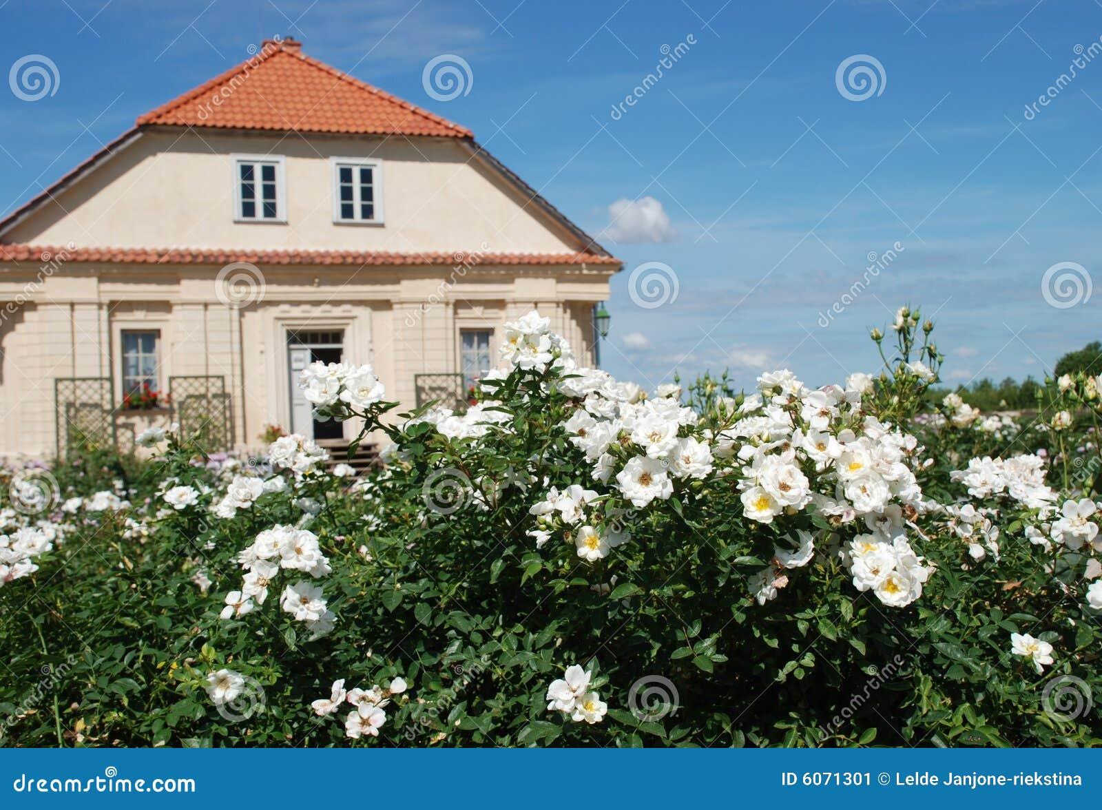 Rosas y casa hermosas del s del jardinero en fondo imagen for Jardinero en casa