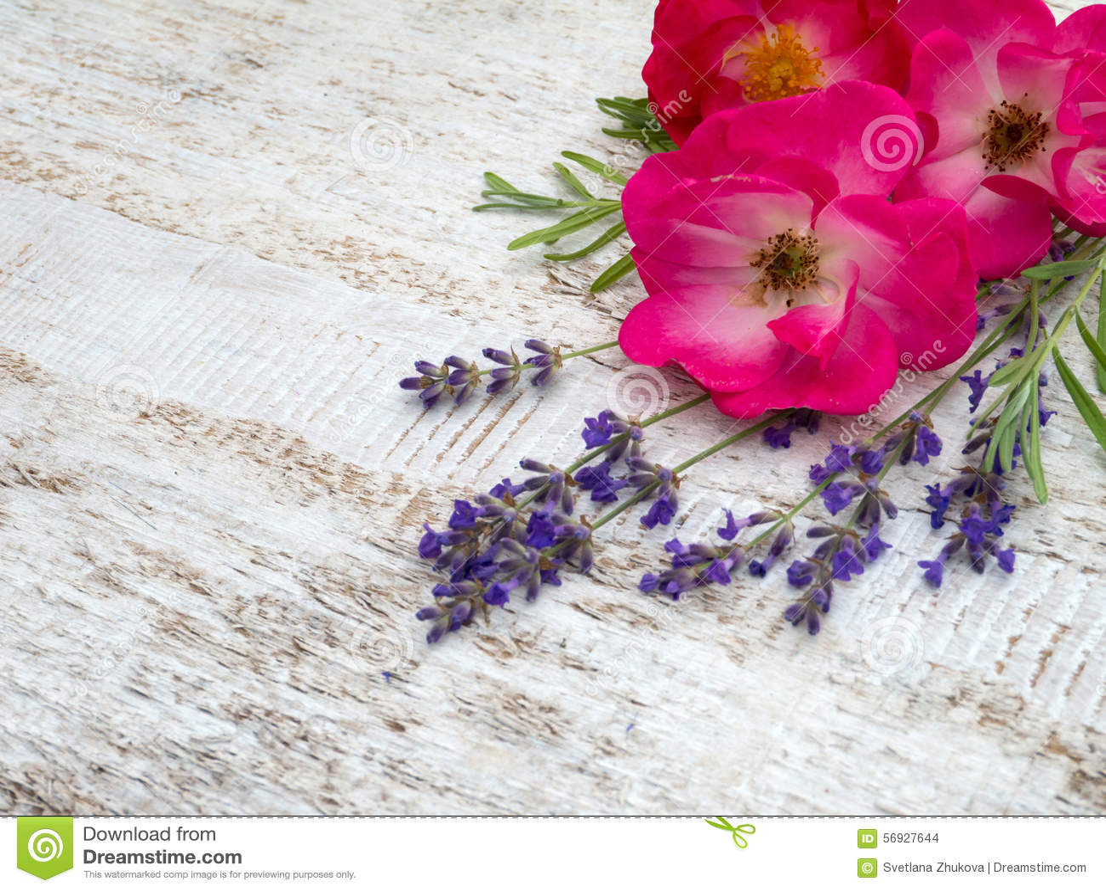 Rosas y ramo rosados brillantes de la lavanda de Provence