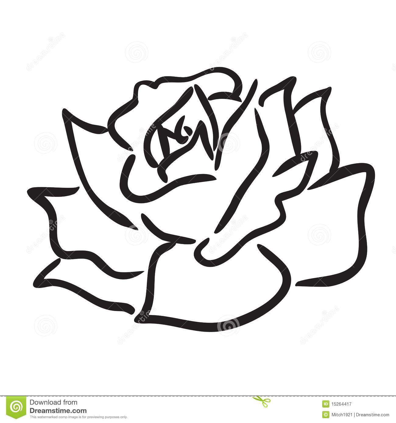 Rose Flower Vector Simple Line Drawing Illustration Isolated On