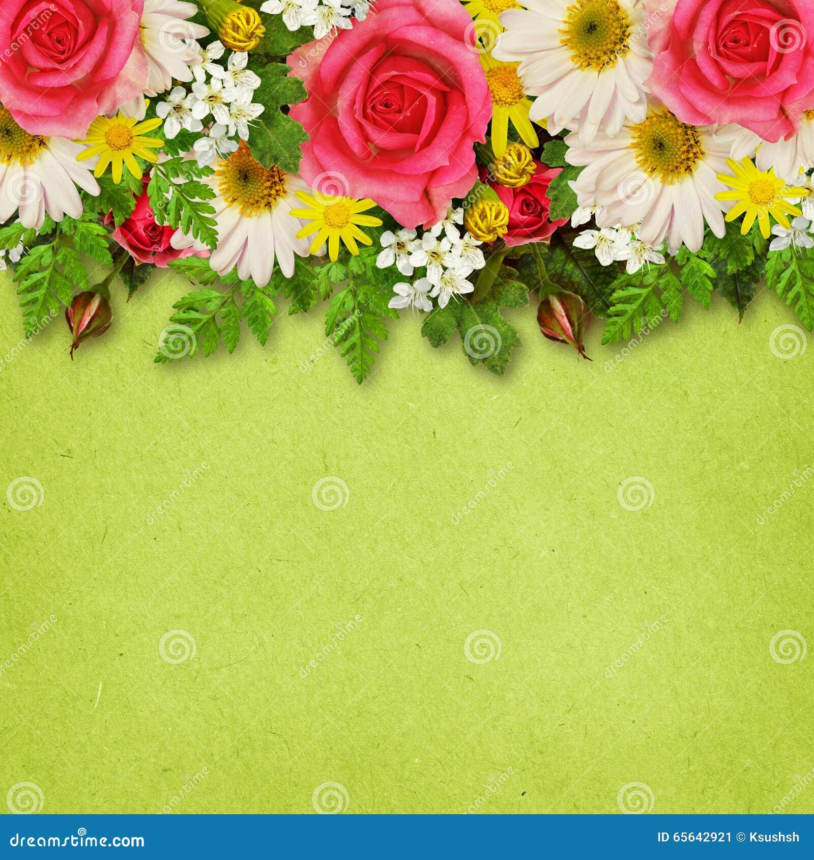 Rose, asters et décoration de fleurs sauvages pour le fond