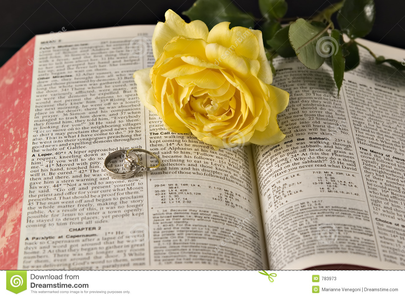 Rose And The Bible Rings Stock Image Image Of Beauty