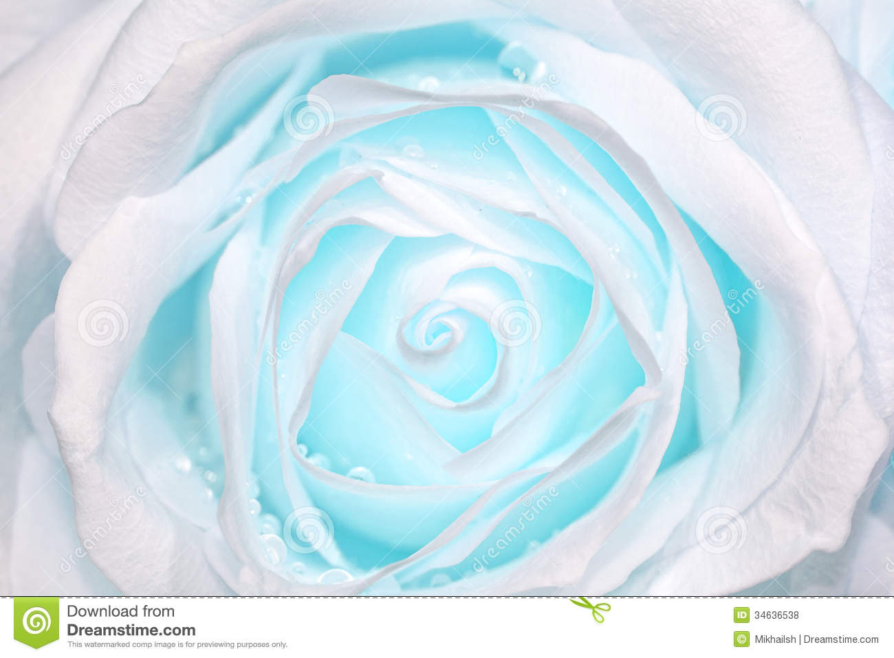 white wallpaper with teal flowers