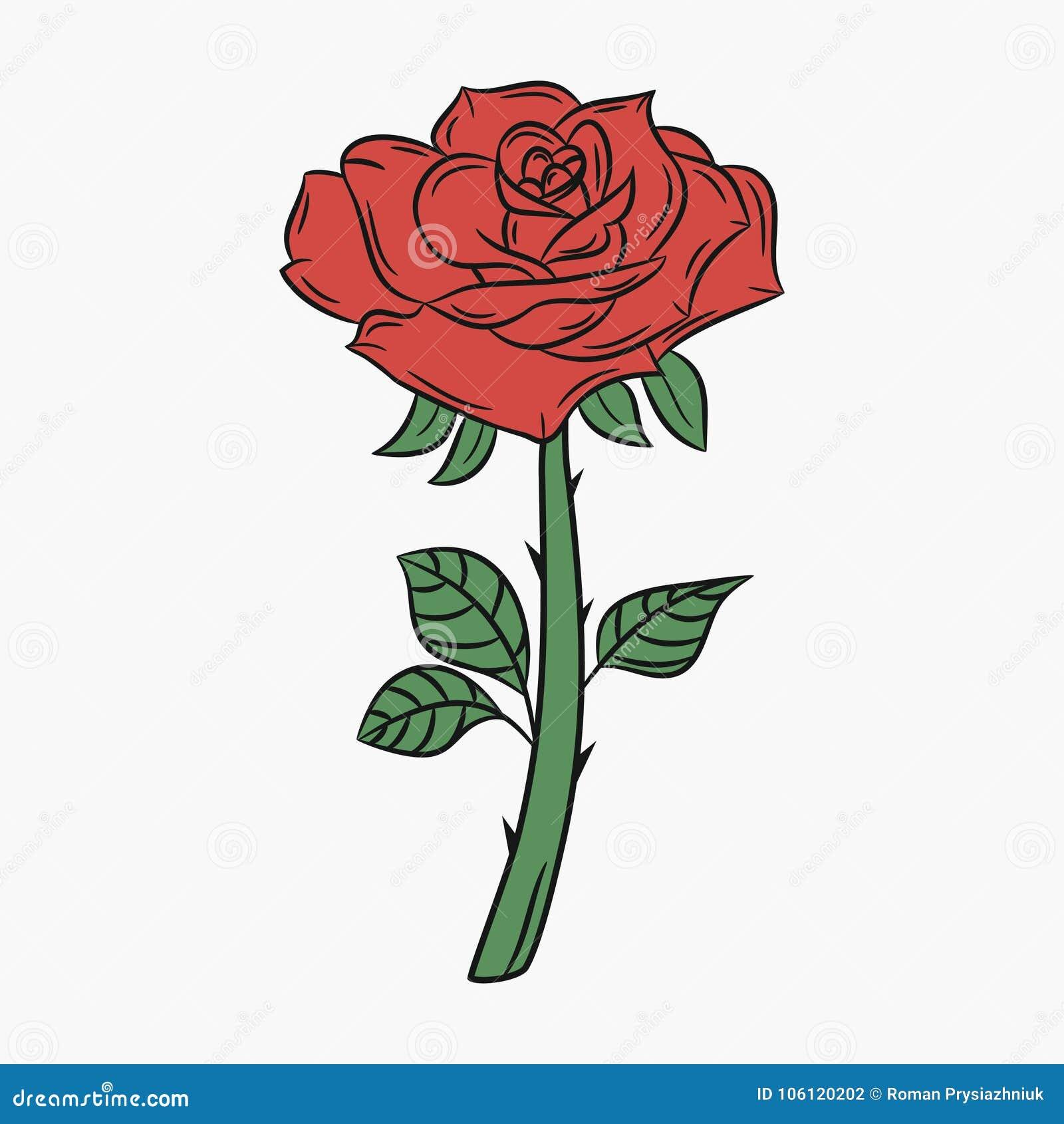 Rose, Blume mit einem Stamm und den Dornen Knospe mit den roten Blumenblättern