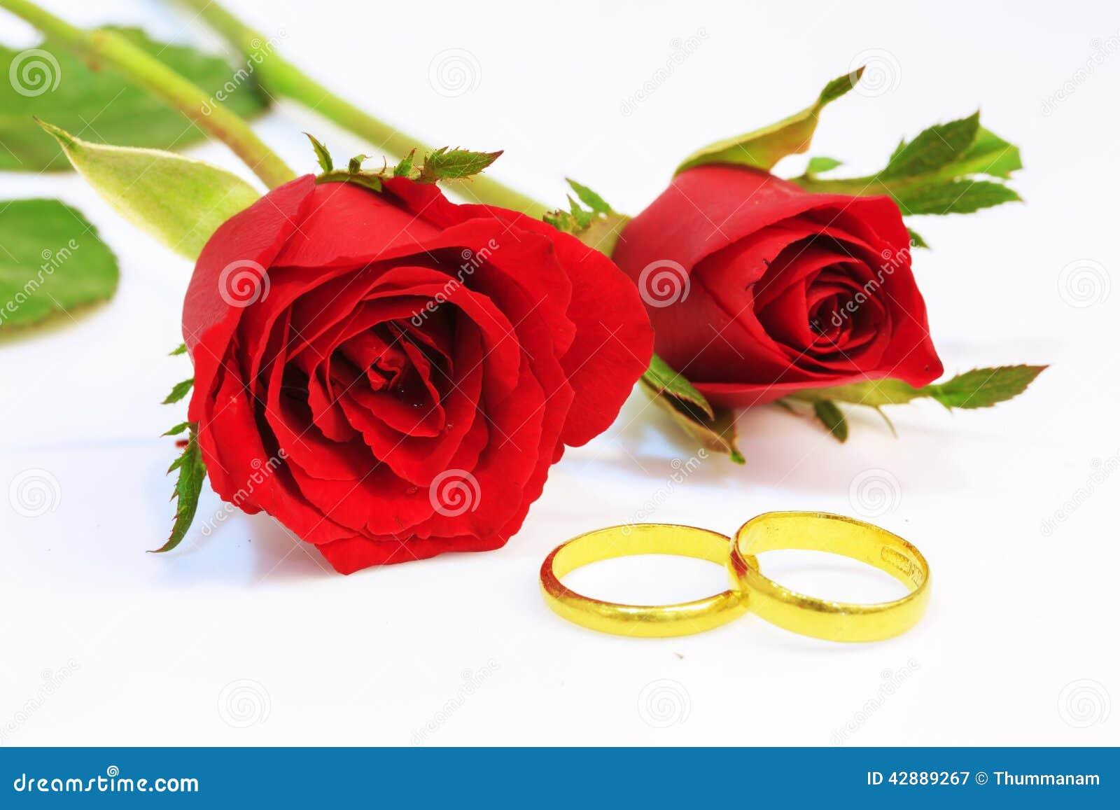 Rose bröllop för röda cirklar