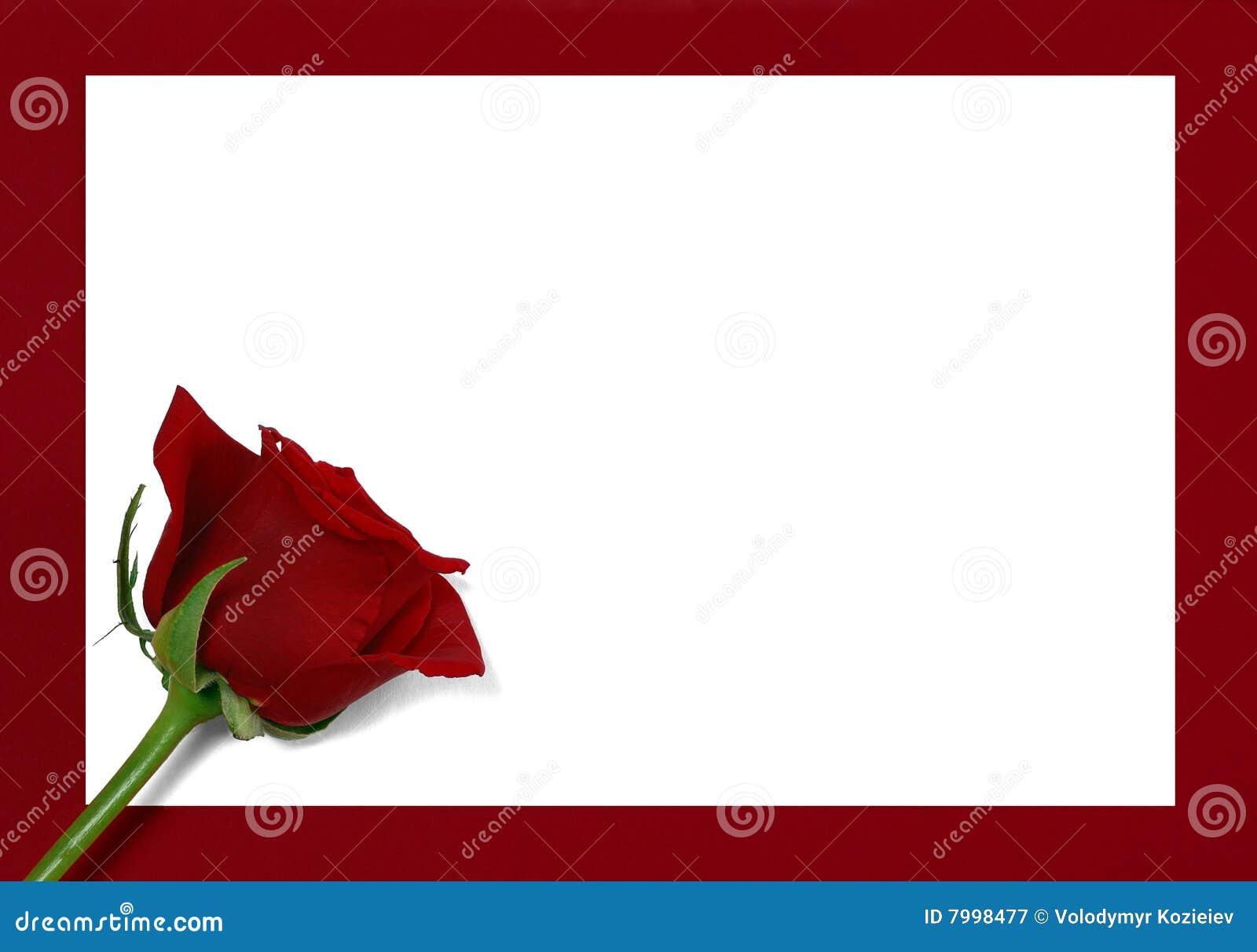 Rose bud on paper
