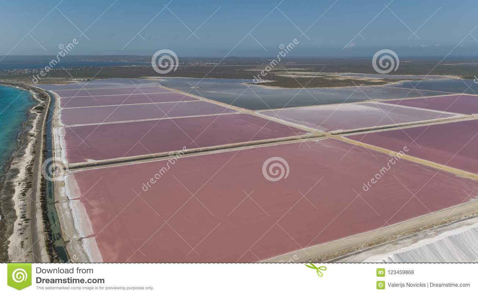Aerial View DJI Mavic Pro Drone Top