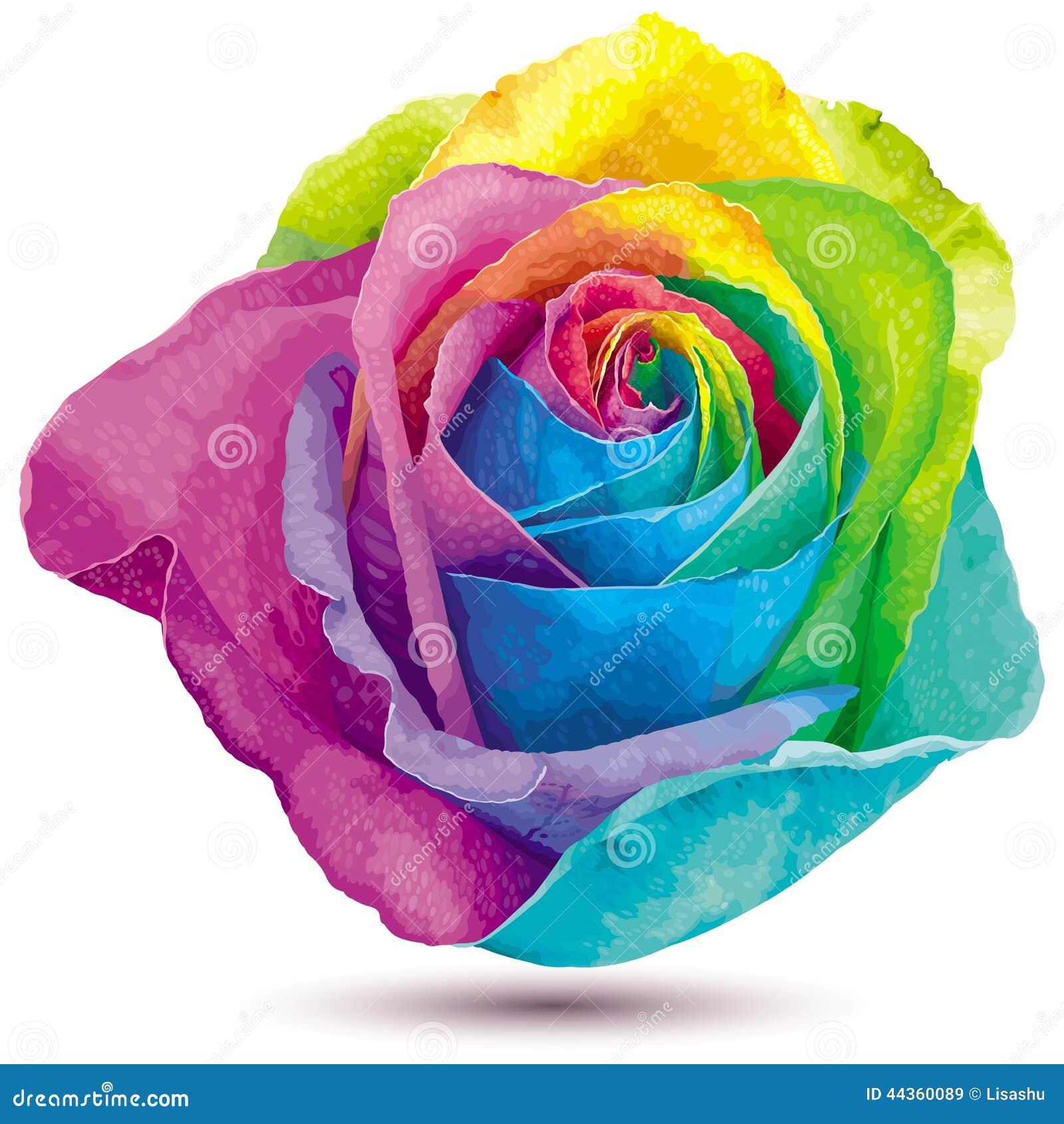rose de couleur d 39 arc en ciel illustration de vecteur image 44360089. Black Bedroom Furniture Sets. Home Design Ideas