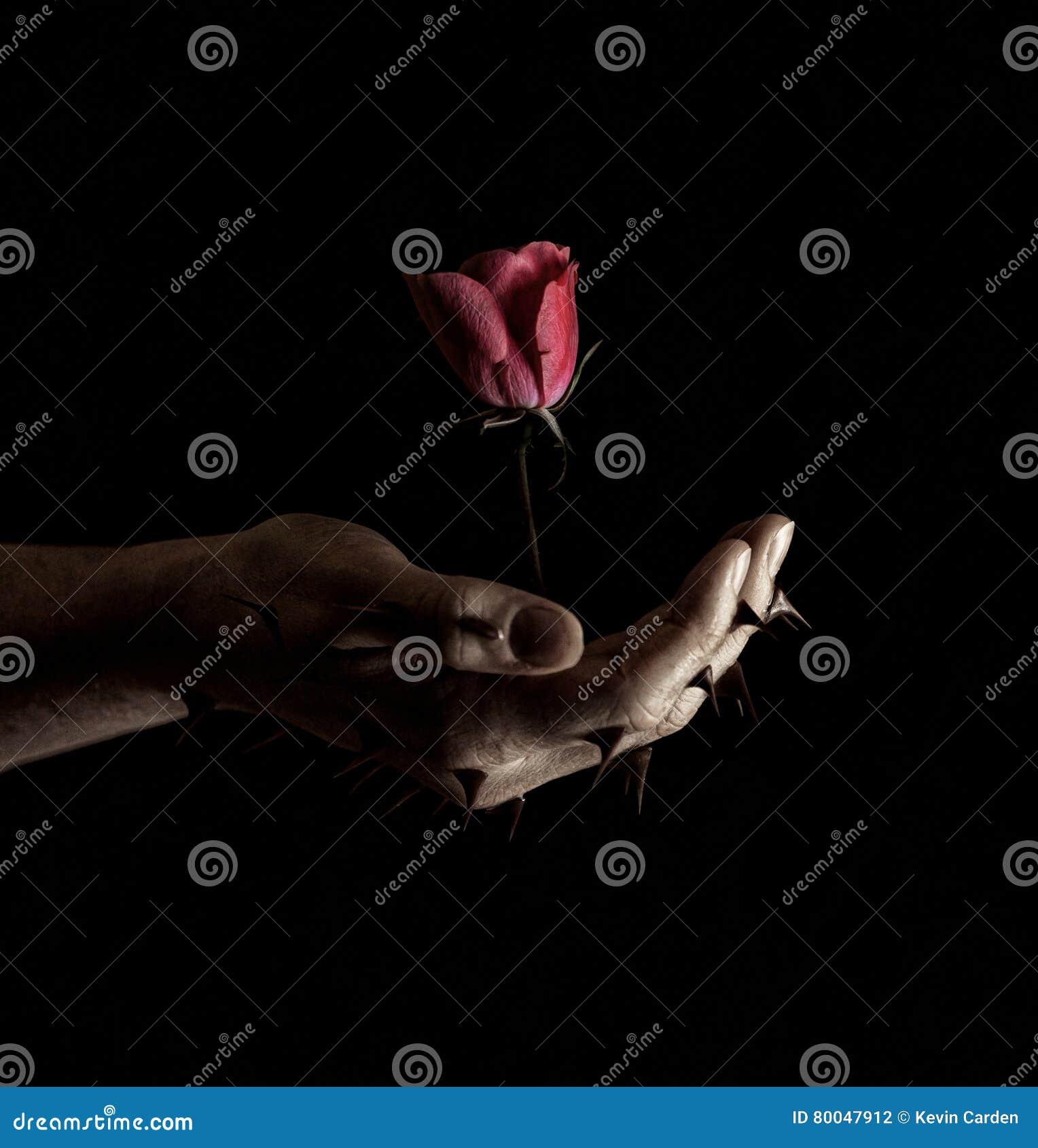 Rose de las espinas