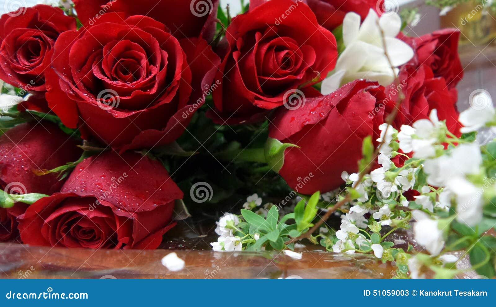 rose de rouge et petit bouquet de fleur blanche image stock image du petit blanc 51059003. Black Bedroom Furniture Sets. Home Design Ideas