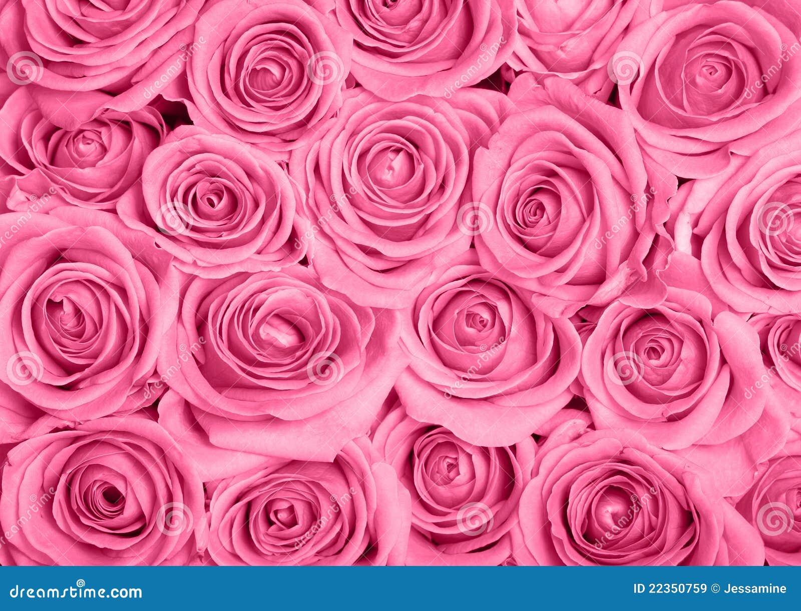 Rose dentellare