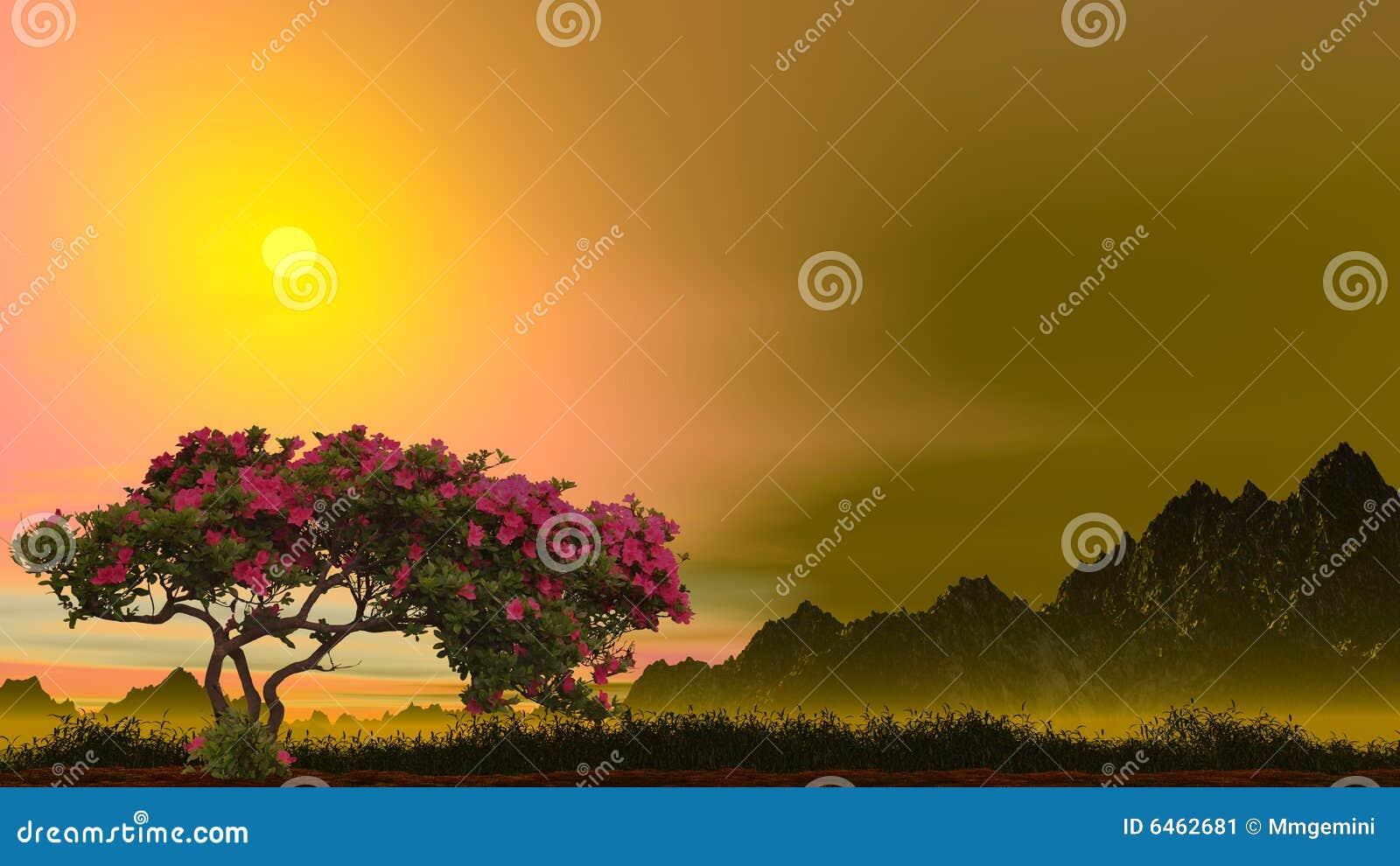 Rose drzewo