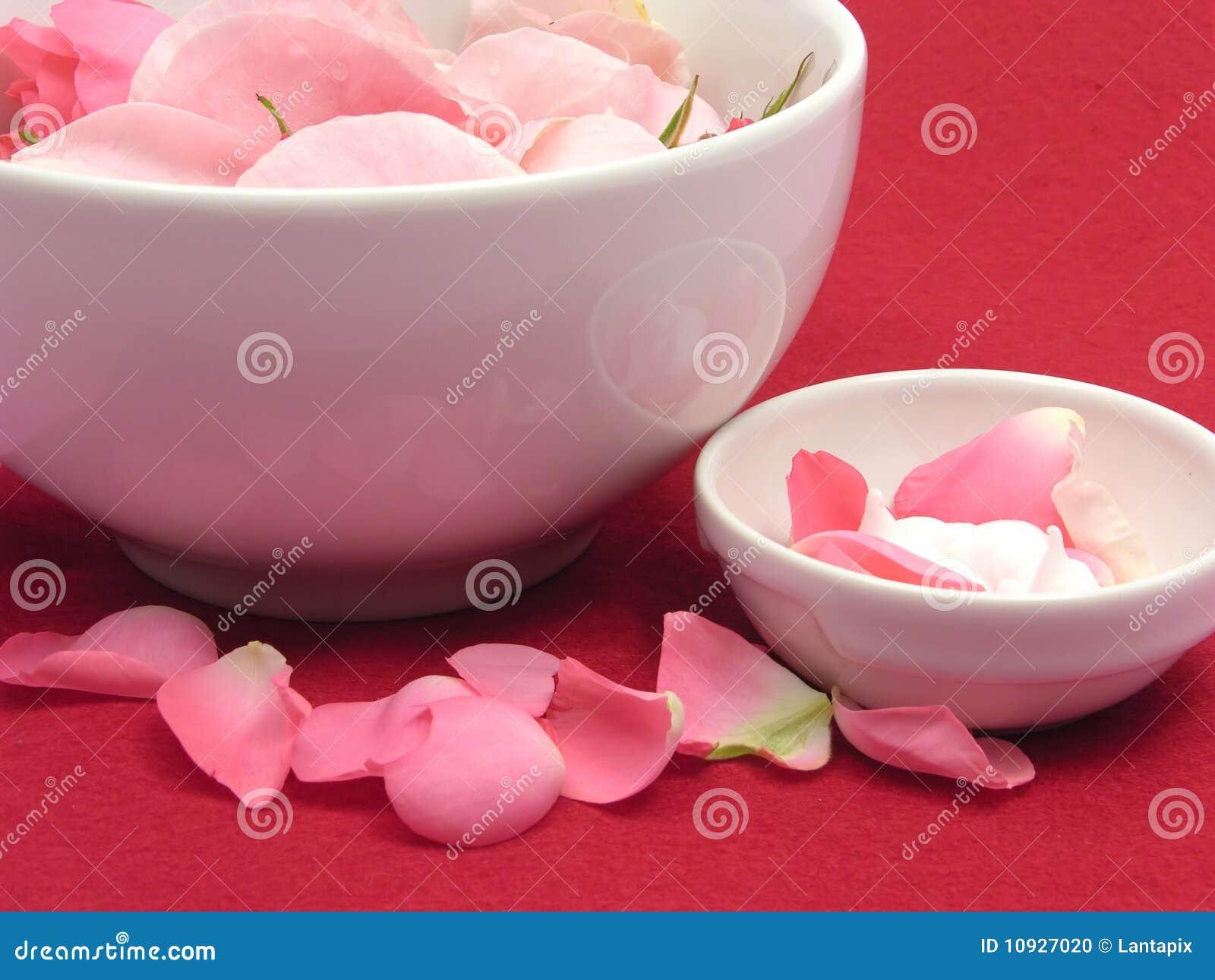 Rose e crema dentellare
