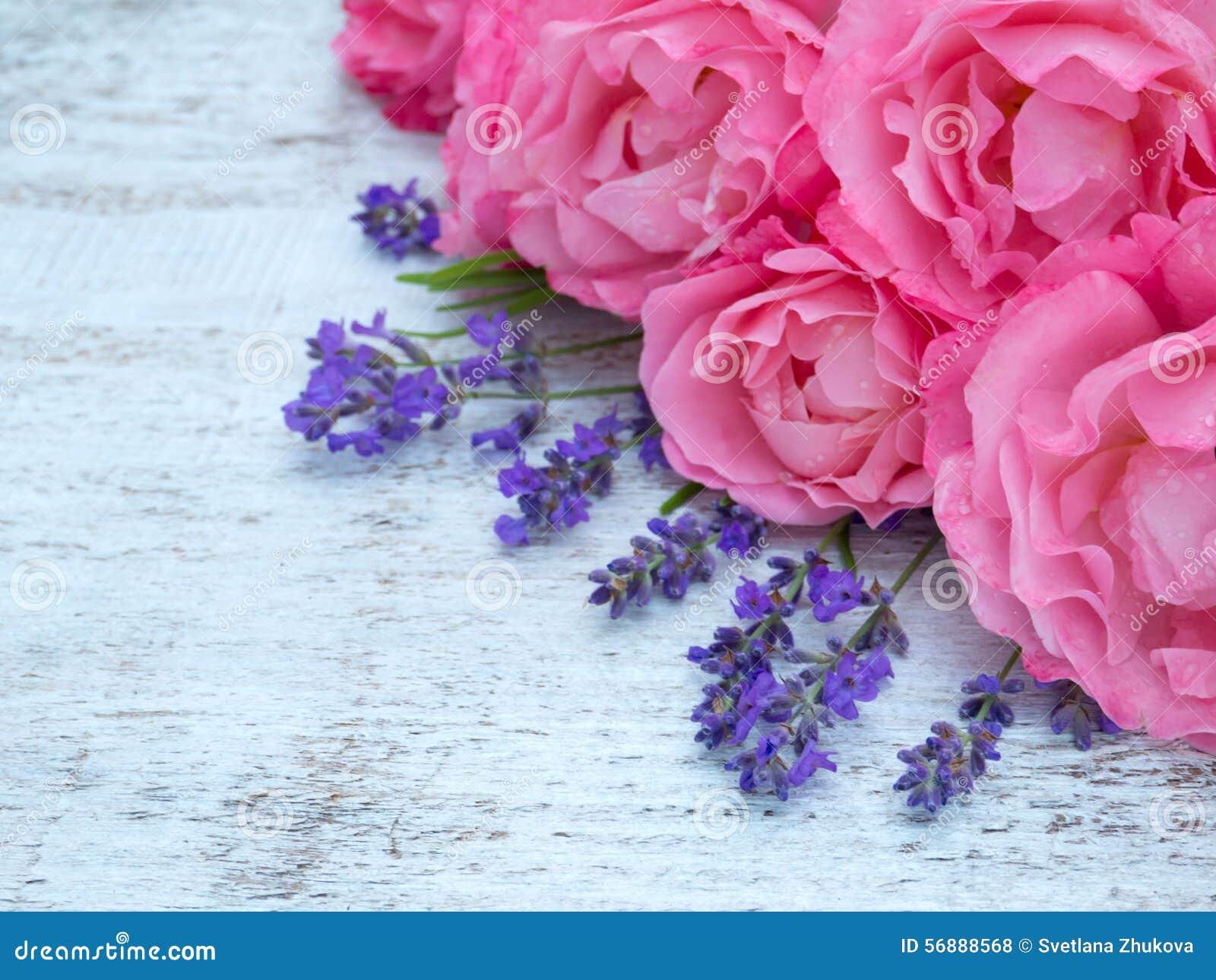 Rose e mazzo rosa della lavanda sui precedenti bianchi