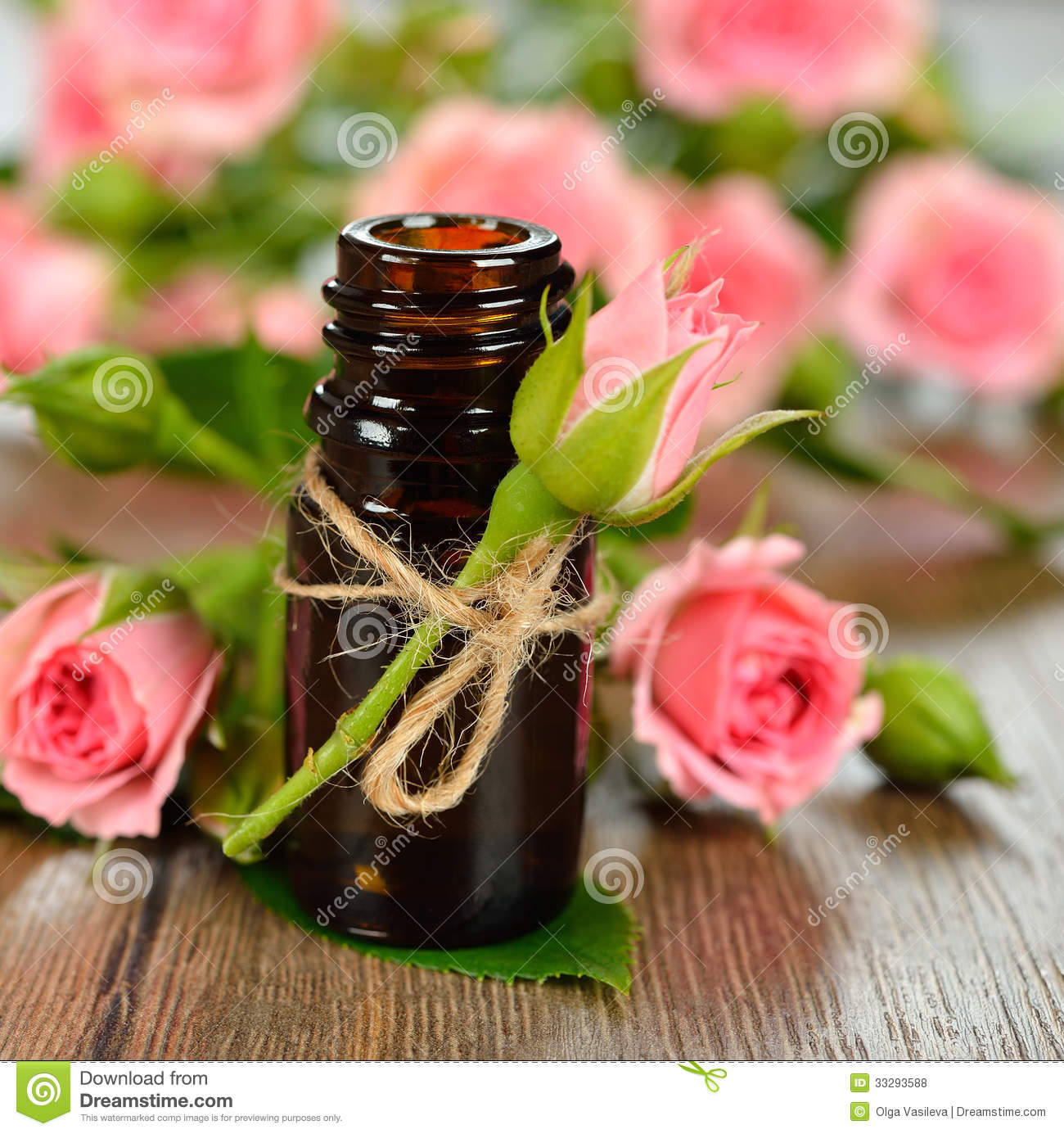 Rose essential oil royalty free stock photos image 33293588 - Rose essential oil business ...