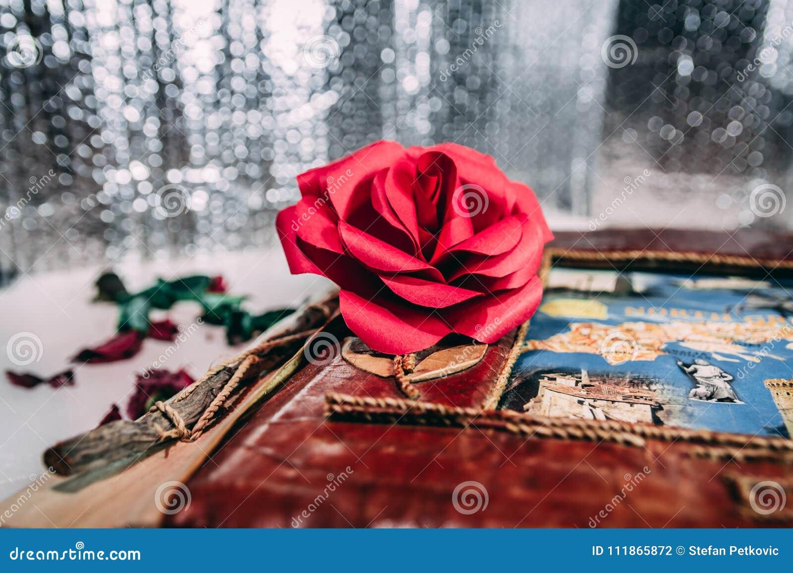 Rose et carnet de rouge sur le fond blanc et gris