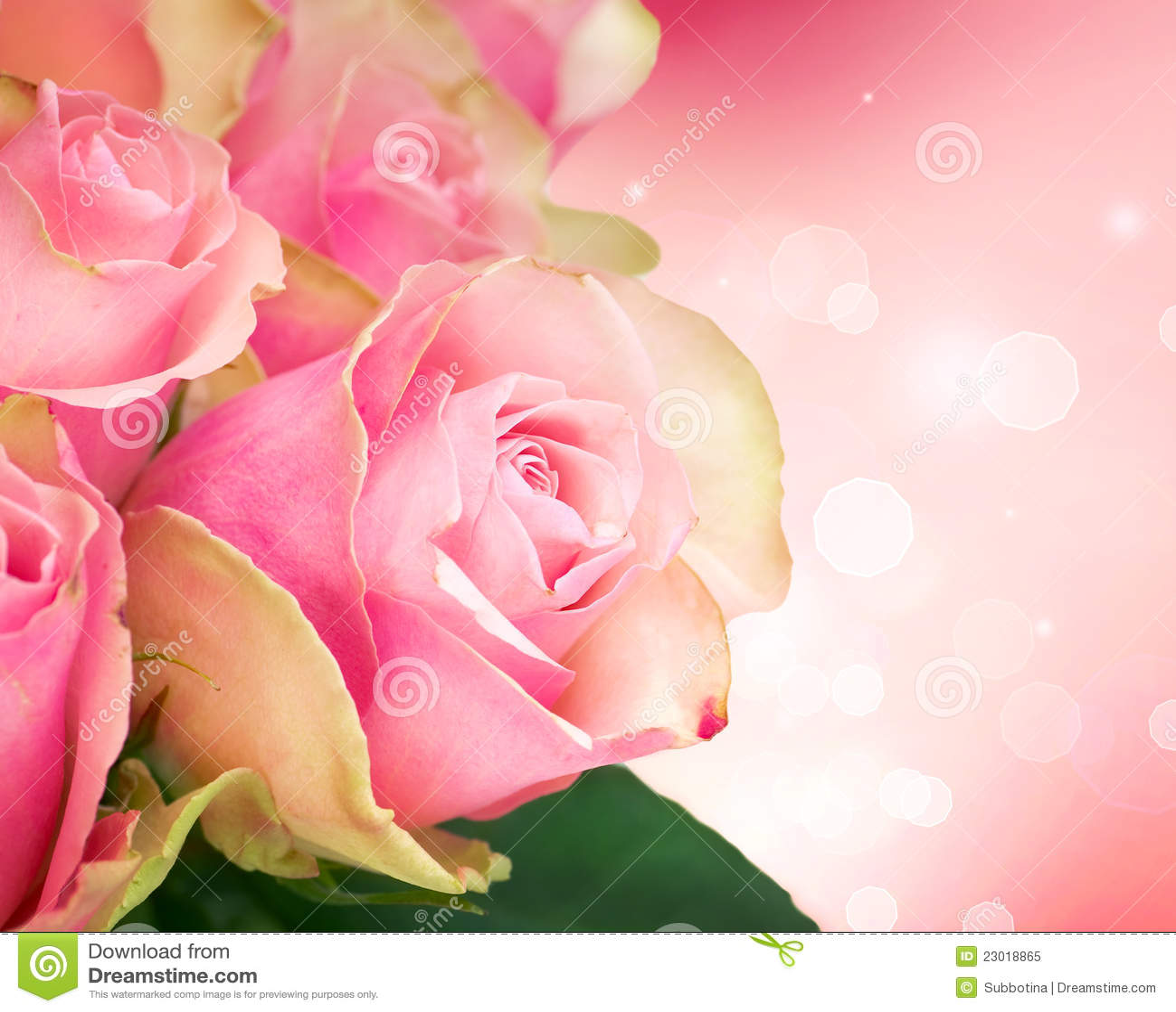 Rose Flower Art Design Royalty Free Stock Image