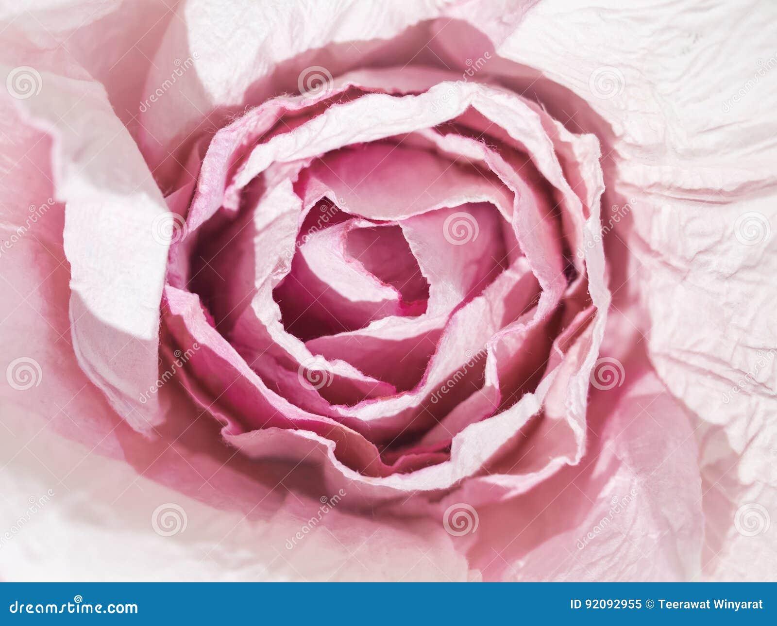 Rose flower bloom paper craft love concept stock image image rose flower bloom paper craft love concept jeuxipadfo Images