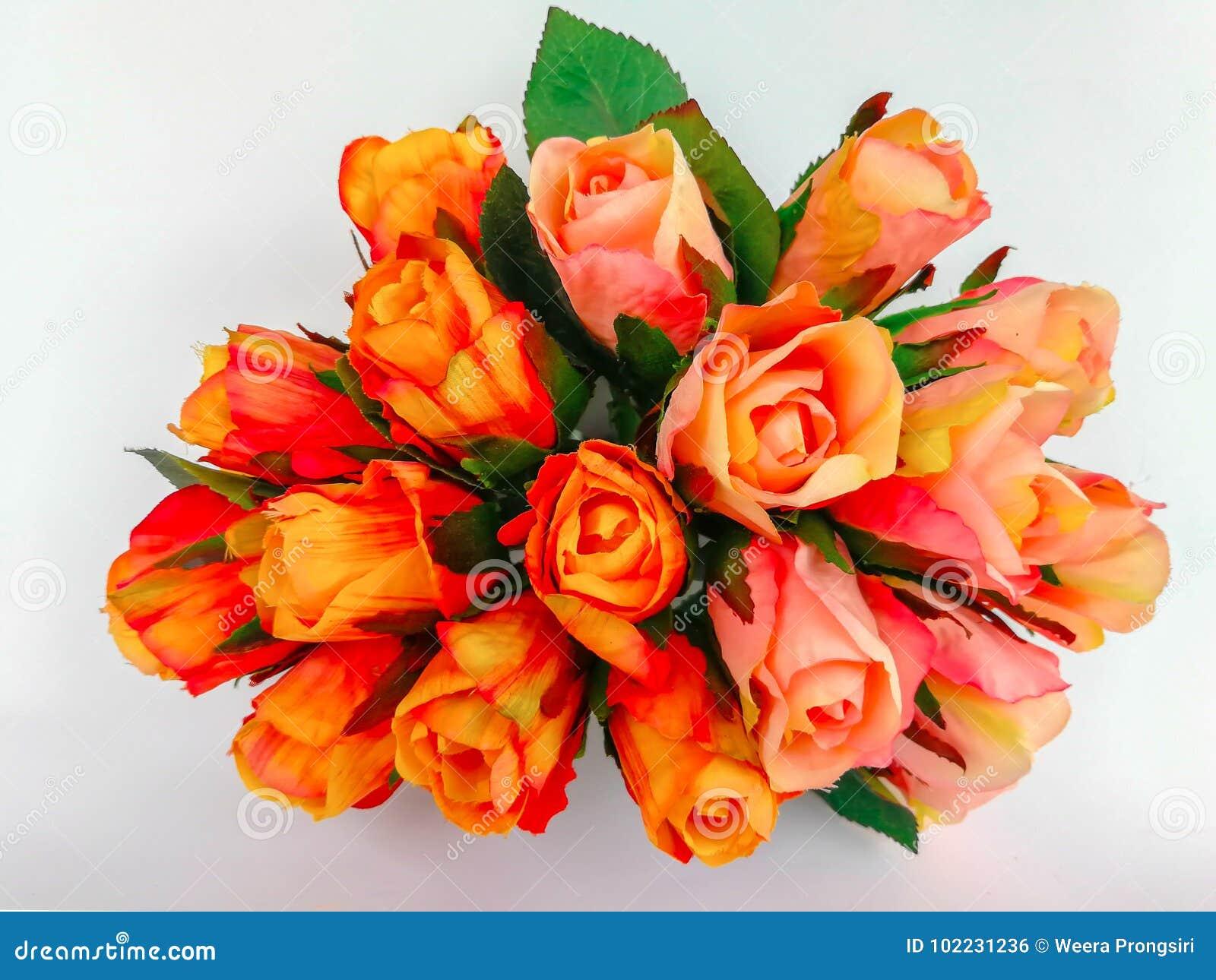 rose flower bunch of flowers bouquet flower vase stock photo