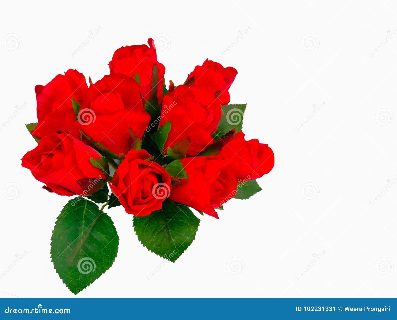 Rose Flower Bunch Of Flowers Bouquet Flower Vase Stock Image
