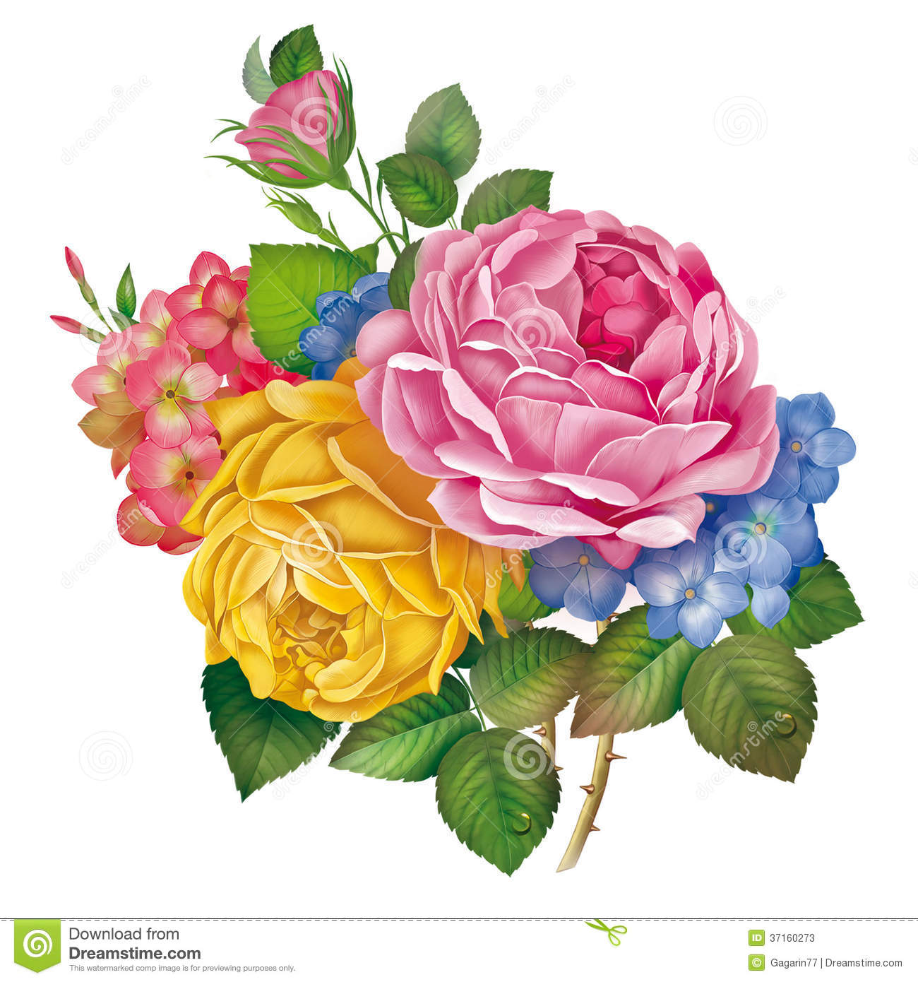 Rose, Flower, Drawing, Painting Stock Illustration ...