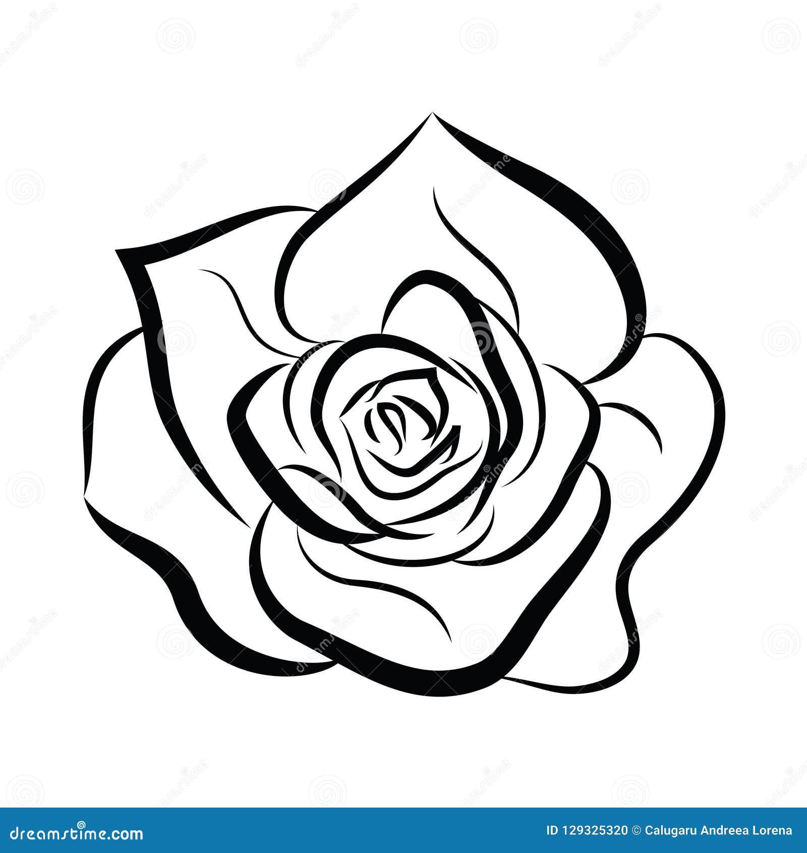 Black Rose Line Vector Icon Stock Vector , Illustration of