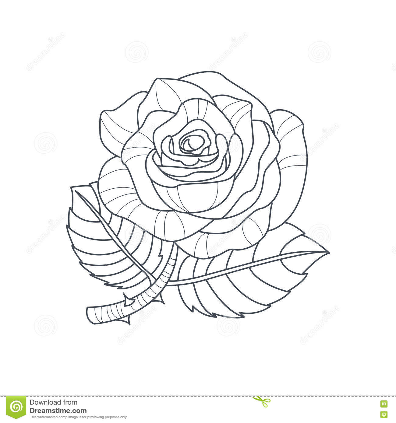 Rose Flower Monochrome Drawing For Coloring Book Stock Vector