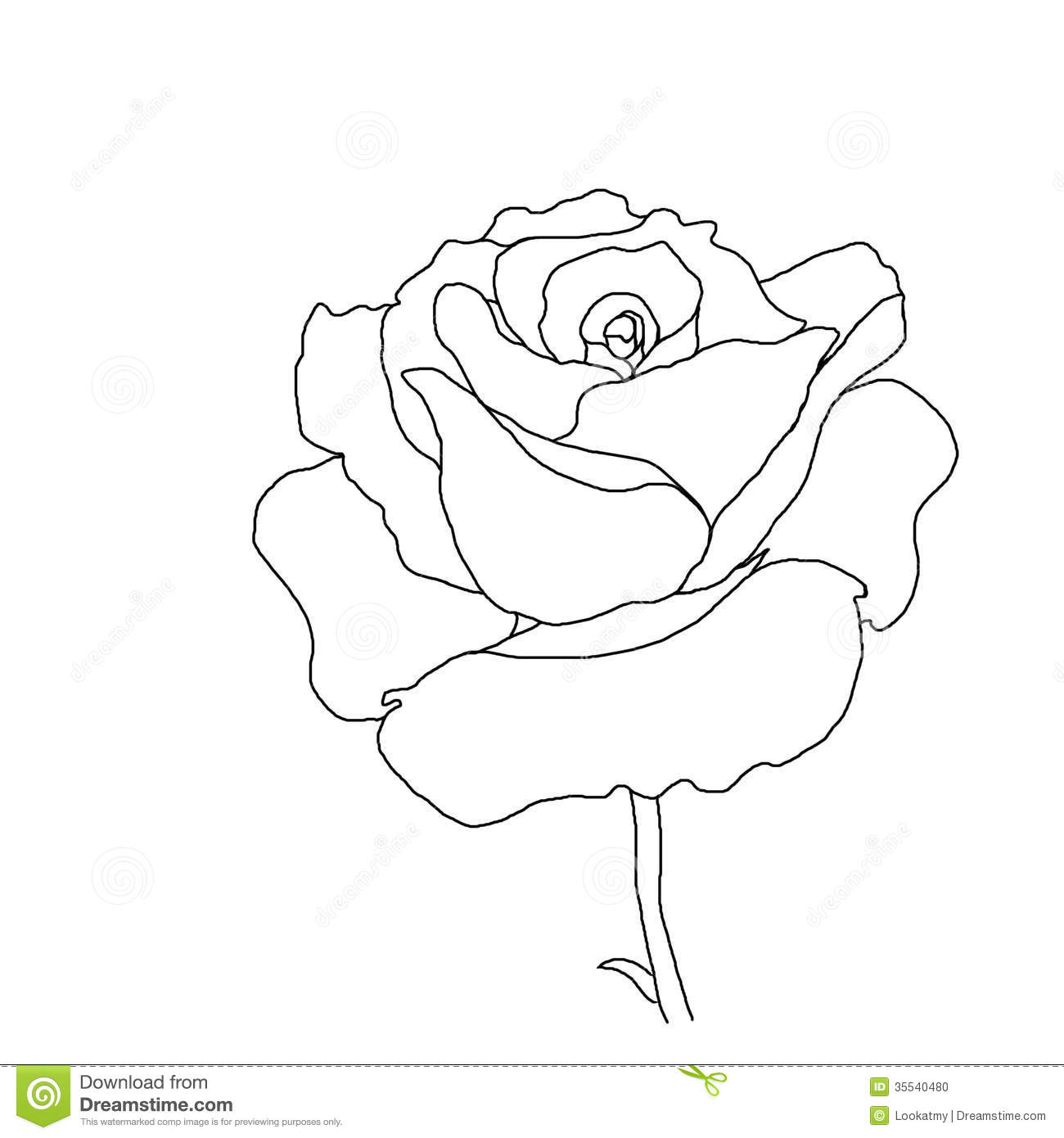 Knumathise Rose Black And White Outline Images