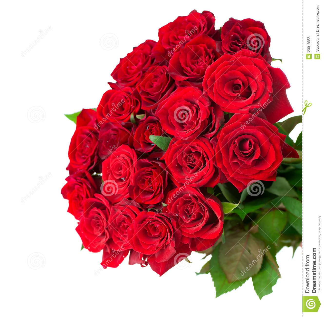 Rose Flowers Bouquet Stock Photo. Image Of Floral, Flower