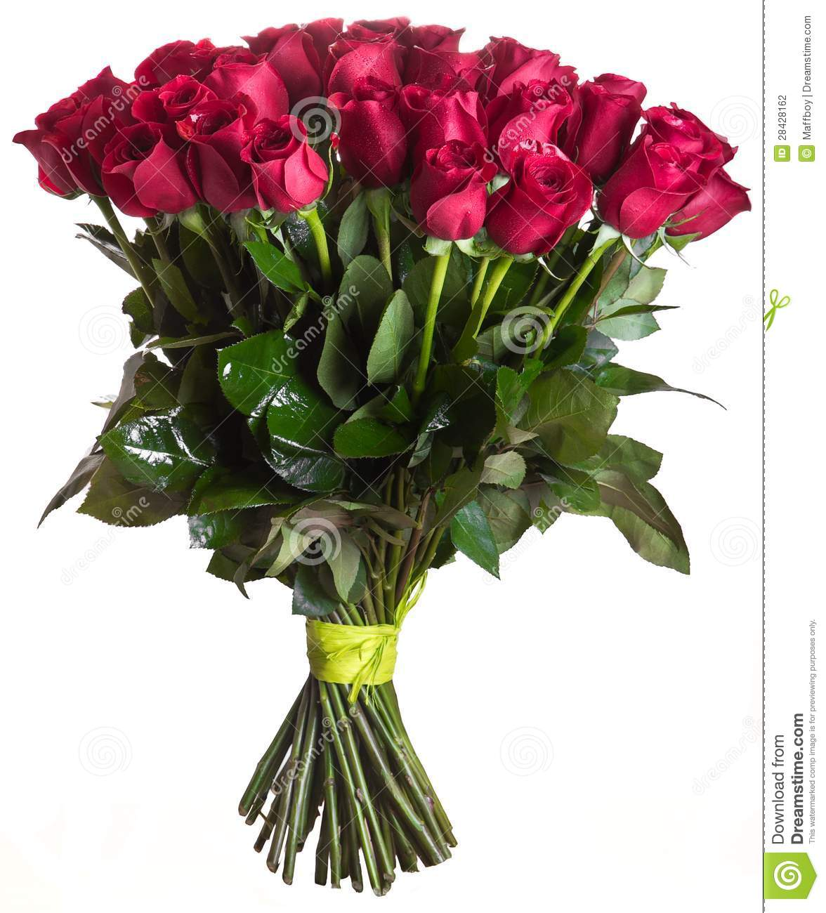 Rose Flowers Bouquet Isolated Stock Photo 28428162 Megapixl