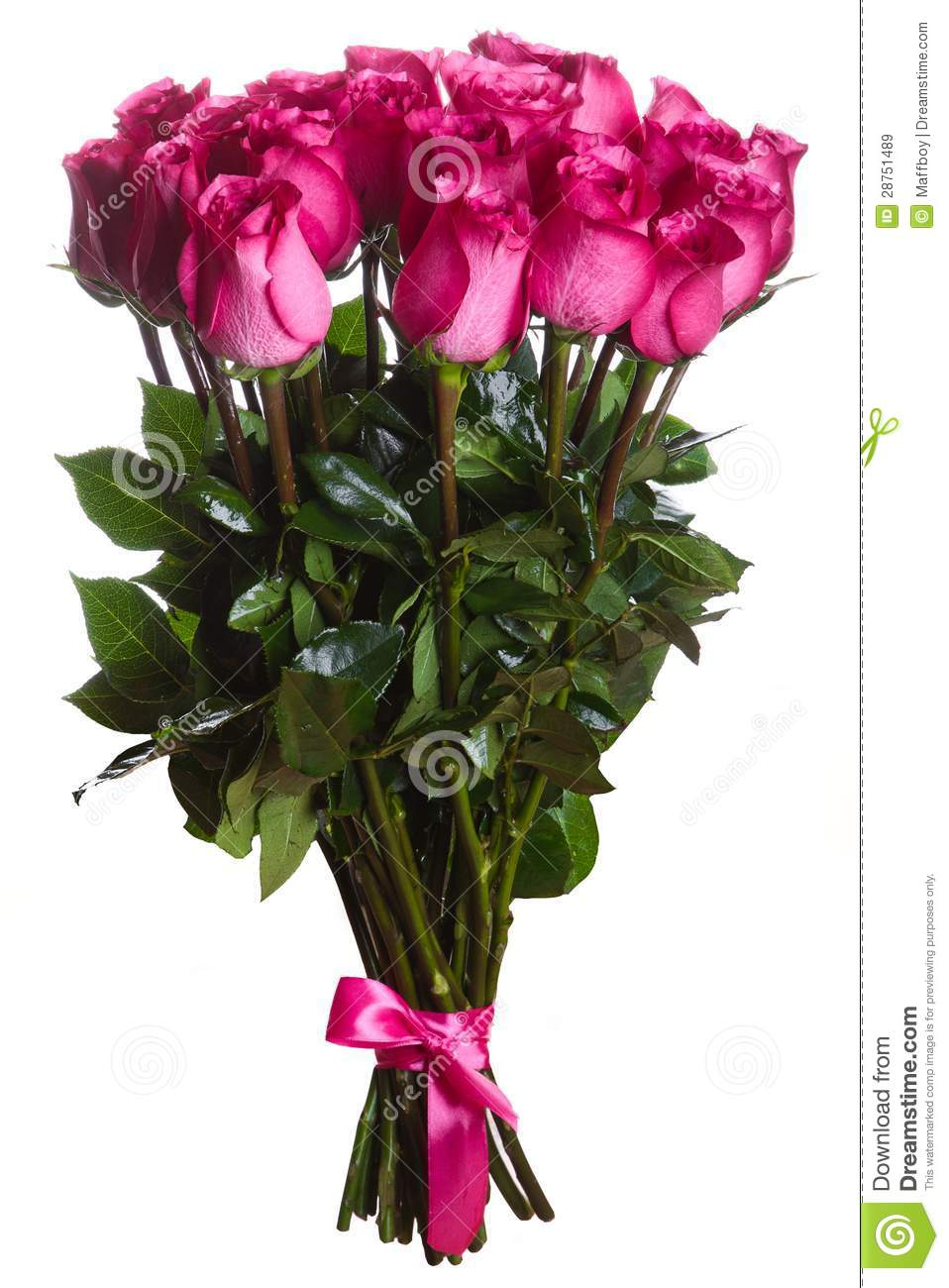 Rose Flowers Bouquet Isolated Stock Image Image Of Bunch Blossom