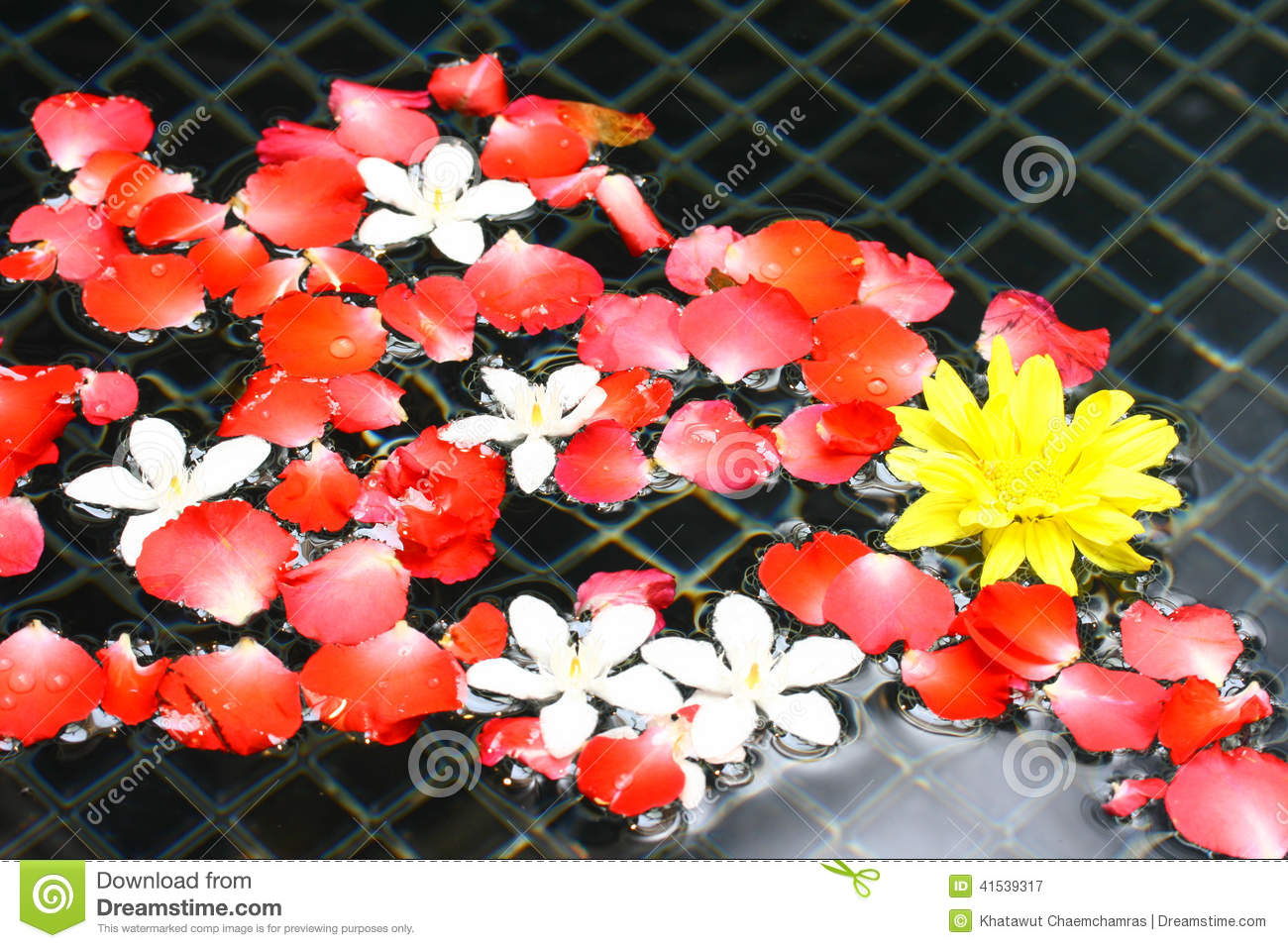 Rose flowers floating water stock image image 41539317 for Floating flowers in water
