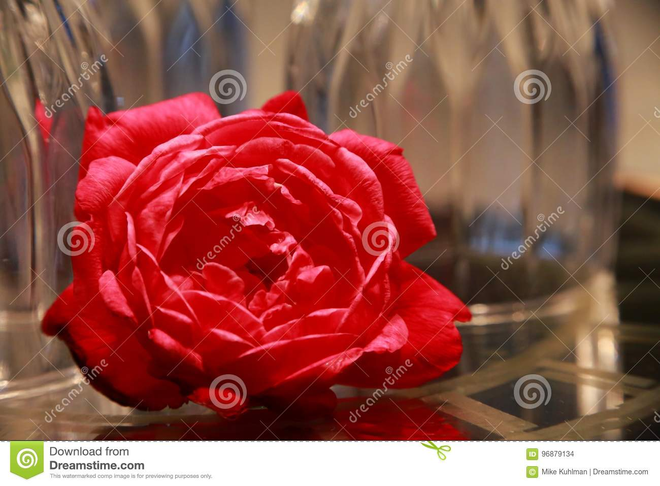 Rose In Front Of Upside Down Wine Glasses Stock Photo Image Of