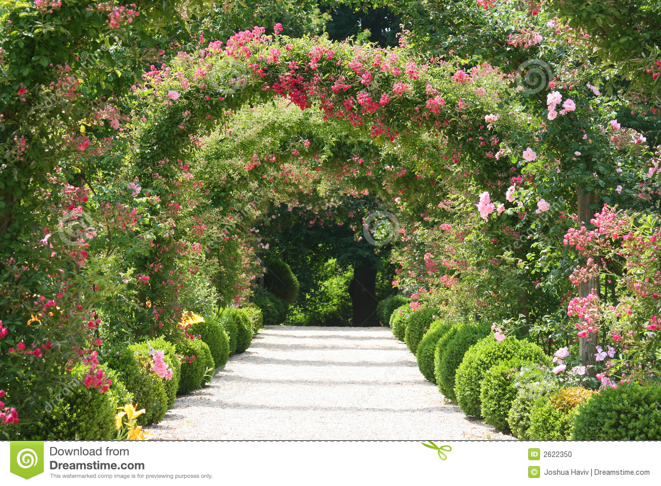 Rose garden landscape stock photo image of bench eden for Landscaping your garden