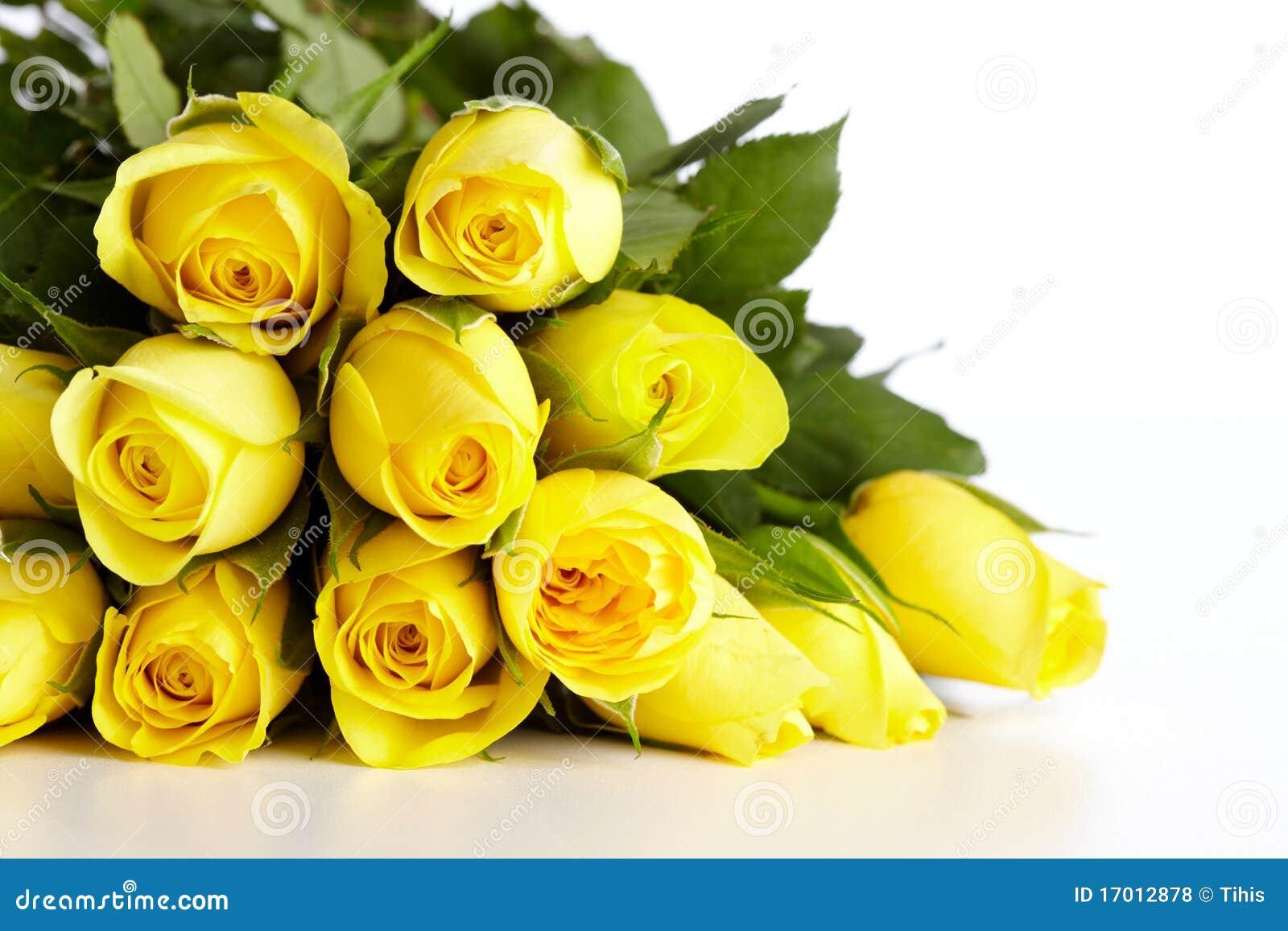 Rose Da Taglio Rifiorenti fiori - lessons - tes teach