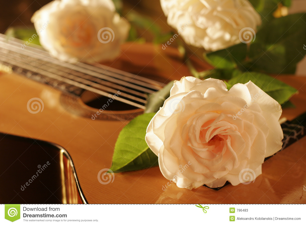 Rose Guitar Stock Image Image Of Acoustic Instrument
