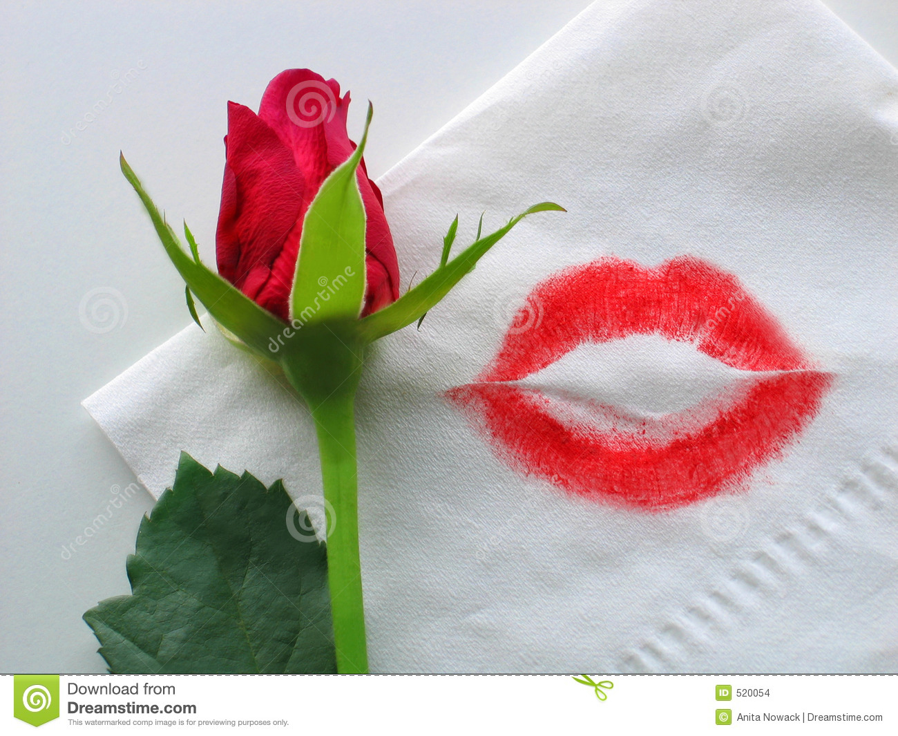 a rose and a lipstick kiss stock photo image of flower 520054