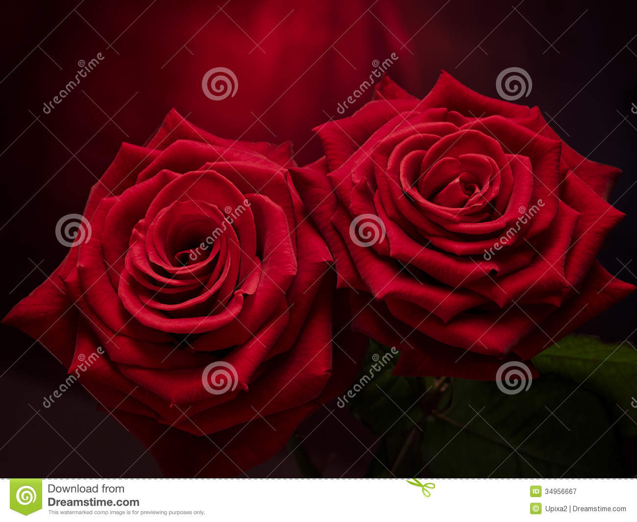Rose On Metal Royalty Free Stock Photography